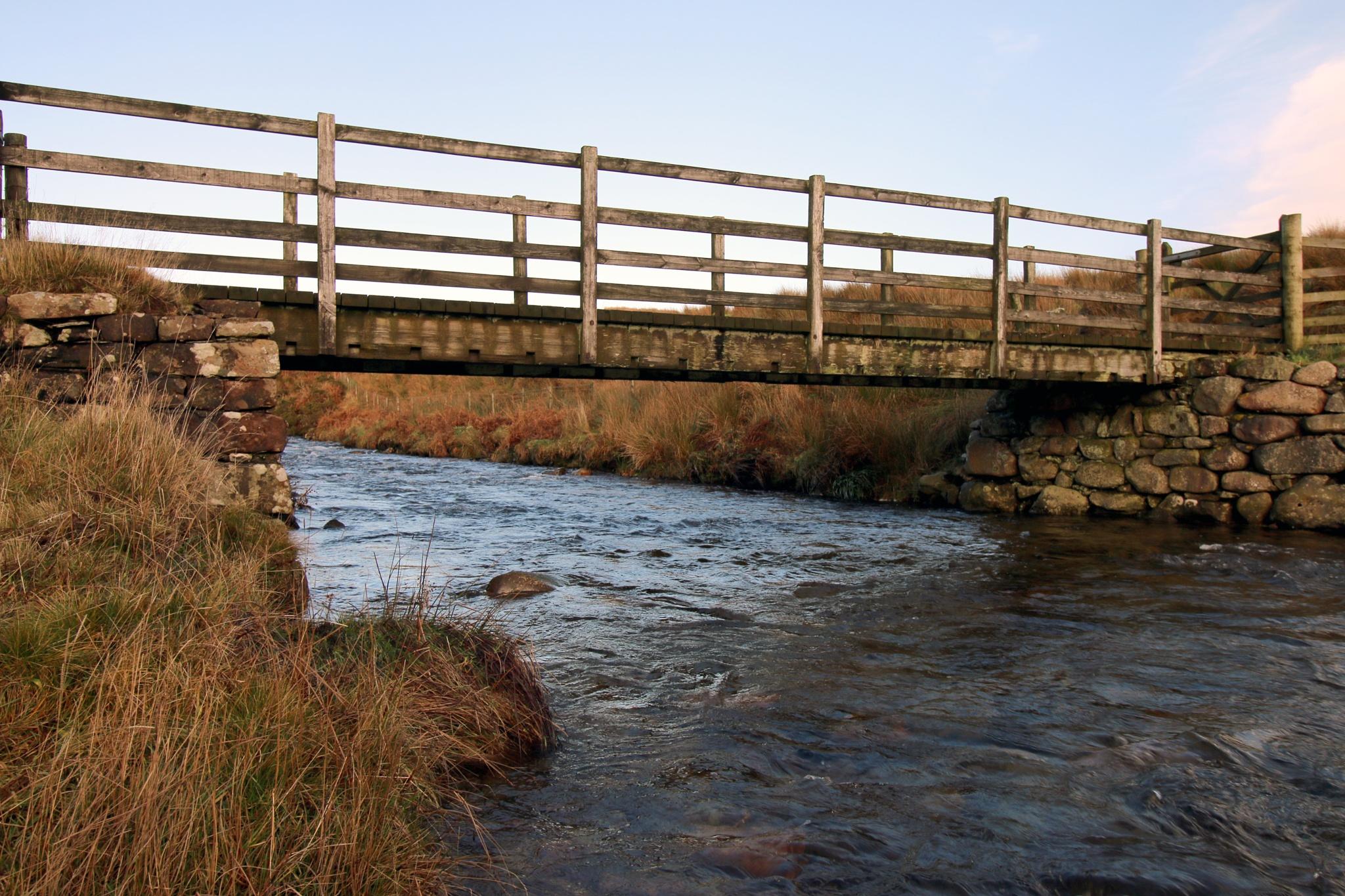 Wooden bridge by Mark Egdell
