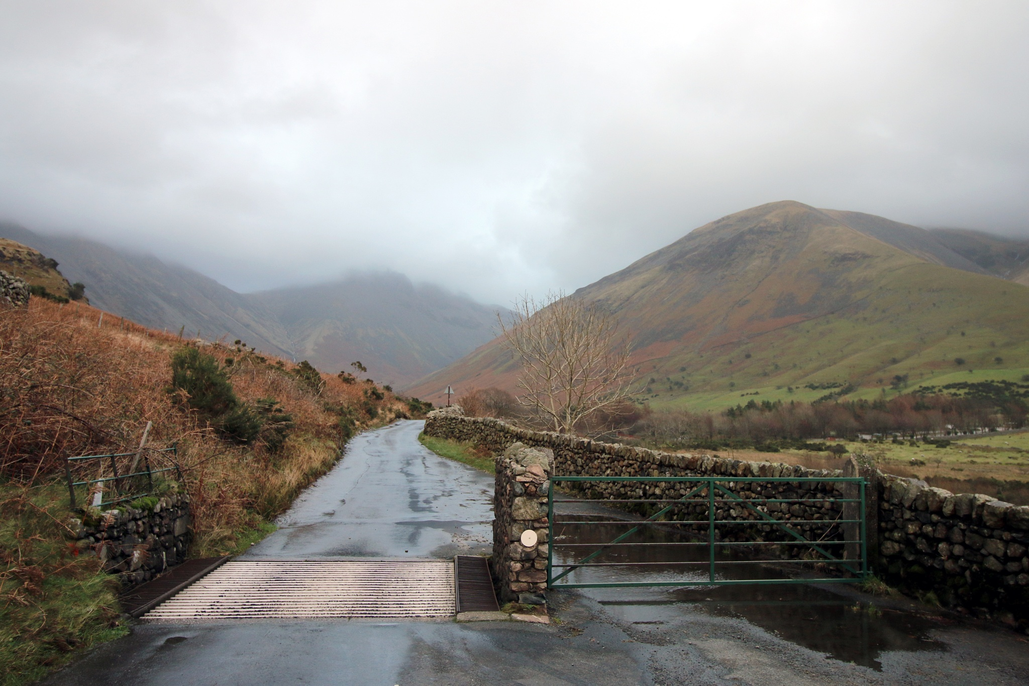 Cattle grid by Mark Egdell