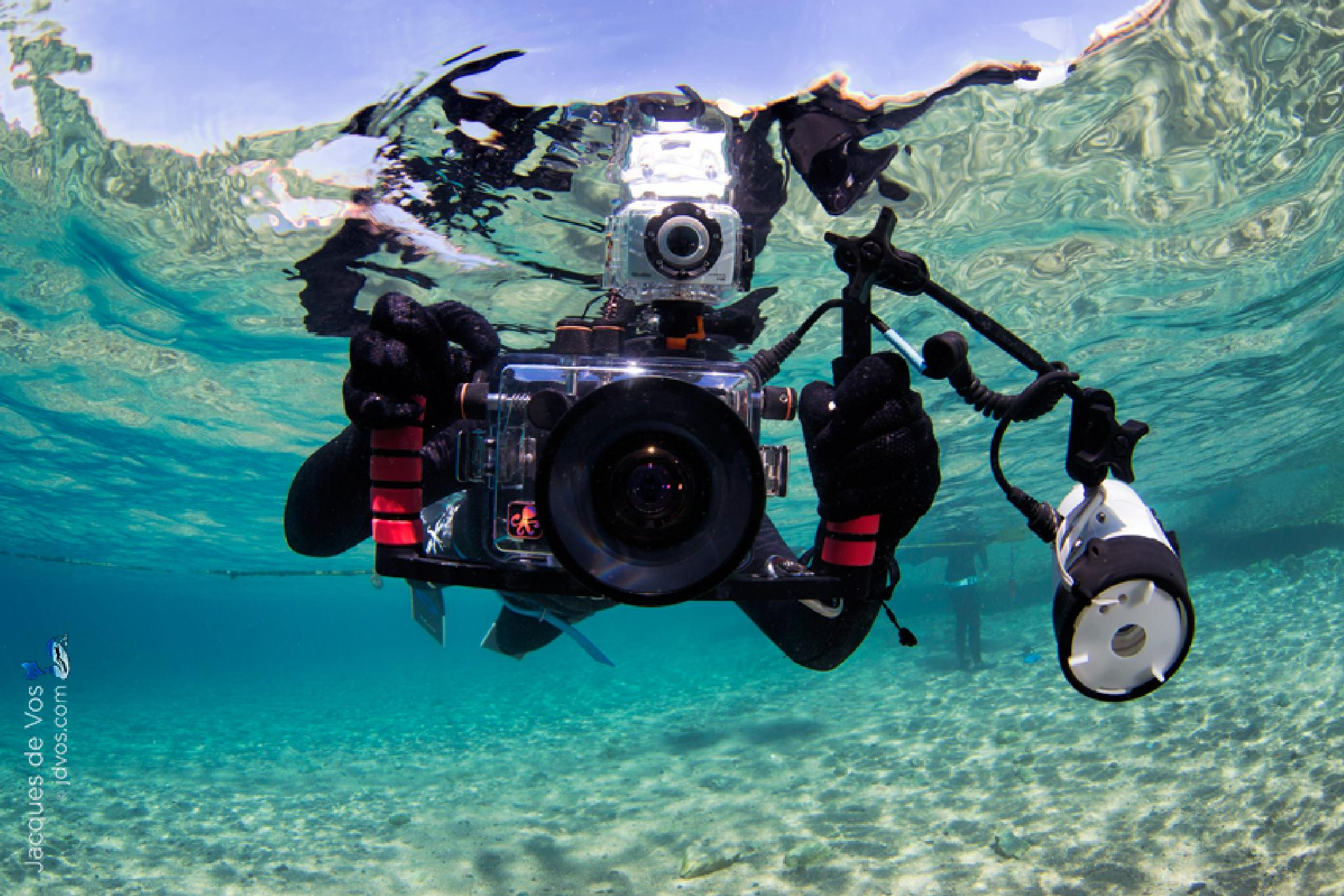 Underwater Camera by Jacques de Vos