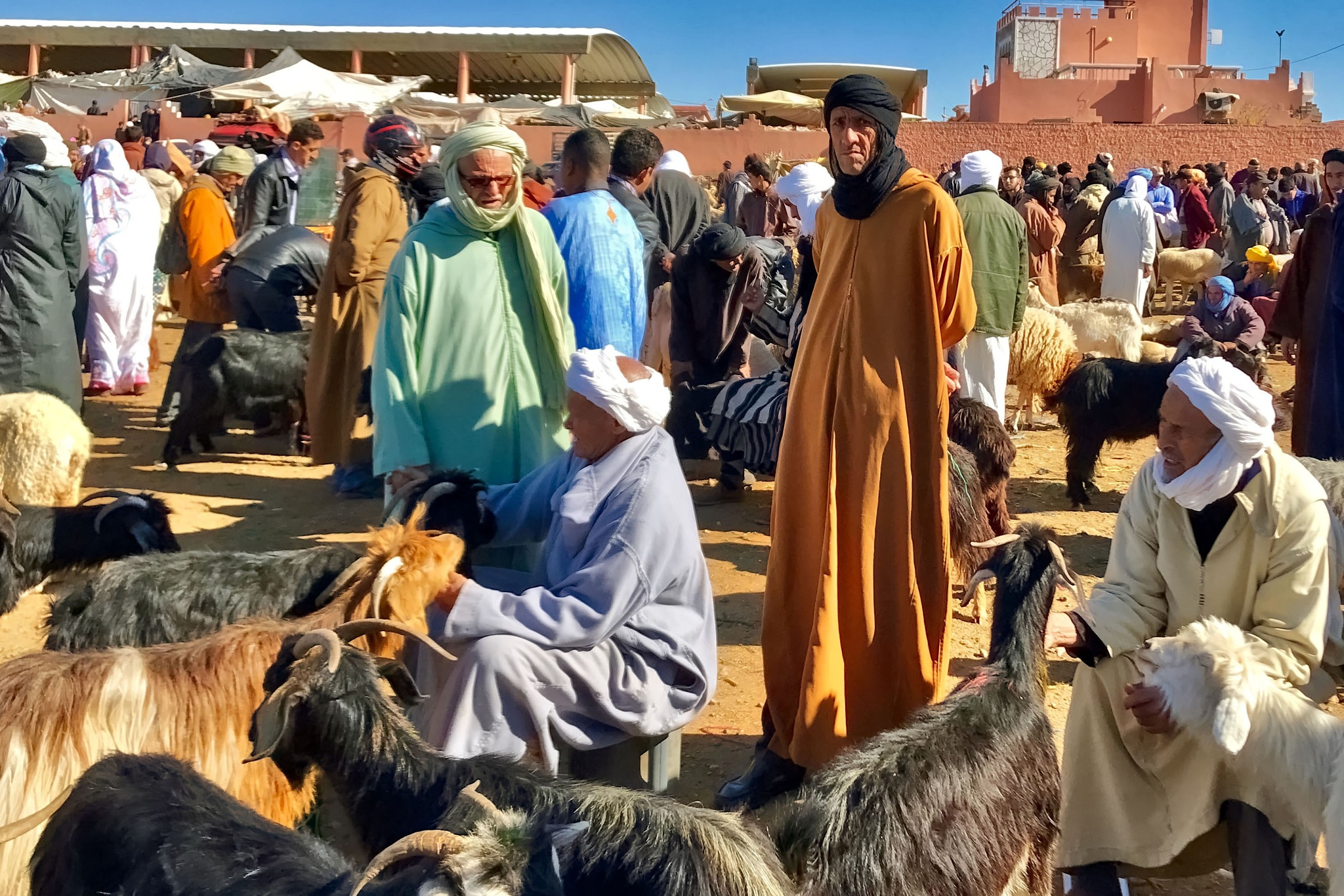 At the market at Guelmim in Morocco. by Erwin Widmer