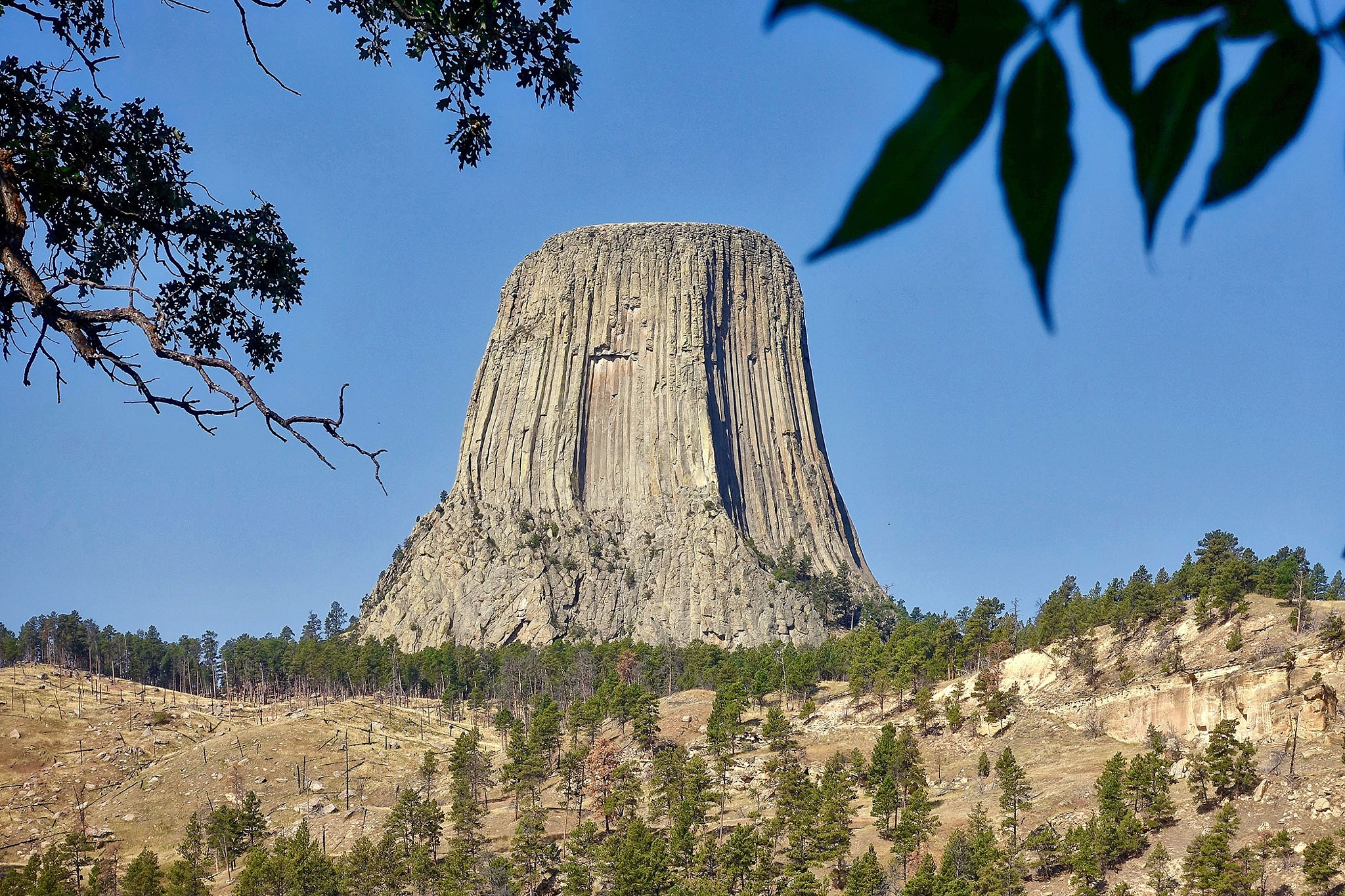 The Devils Tower in the USA. by Erwin Widmer