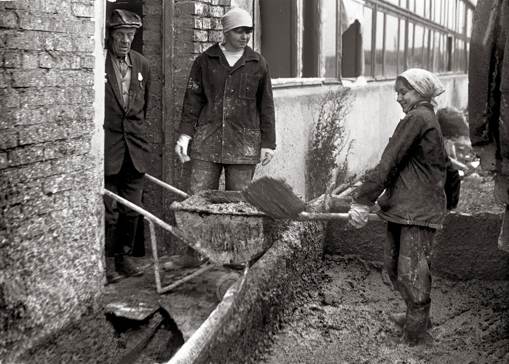 Soviet students build super-pig-breeding farm by Сергей Юрьев