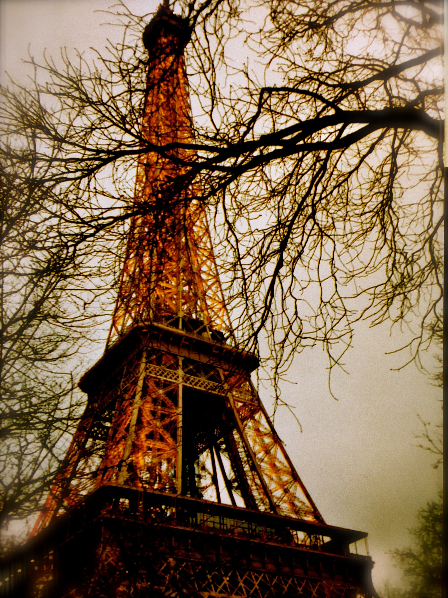 One winter, ten years ago....in Paris. by Arminda