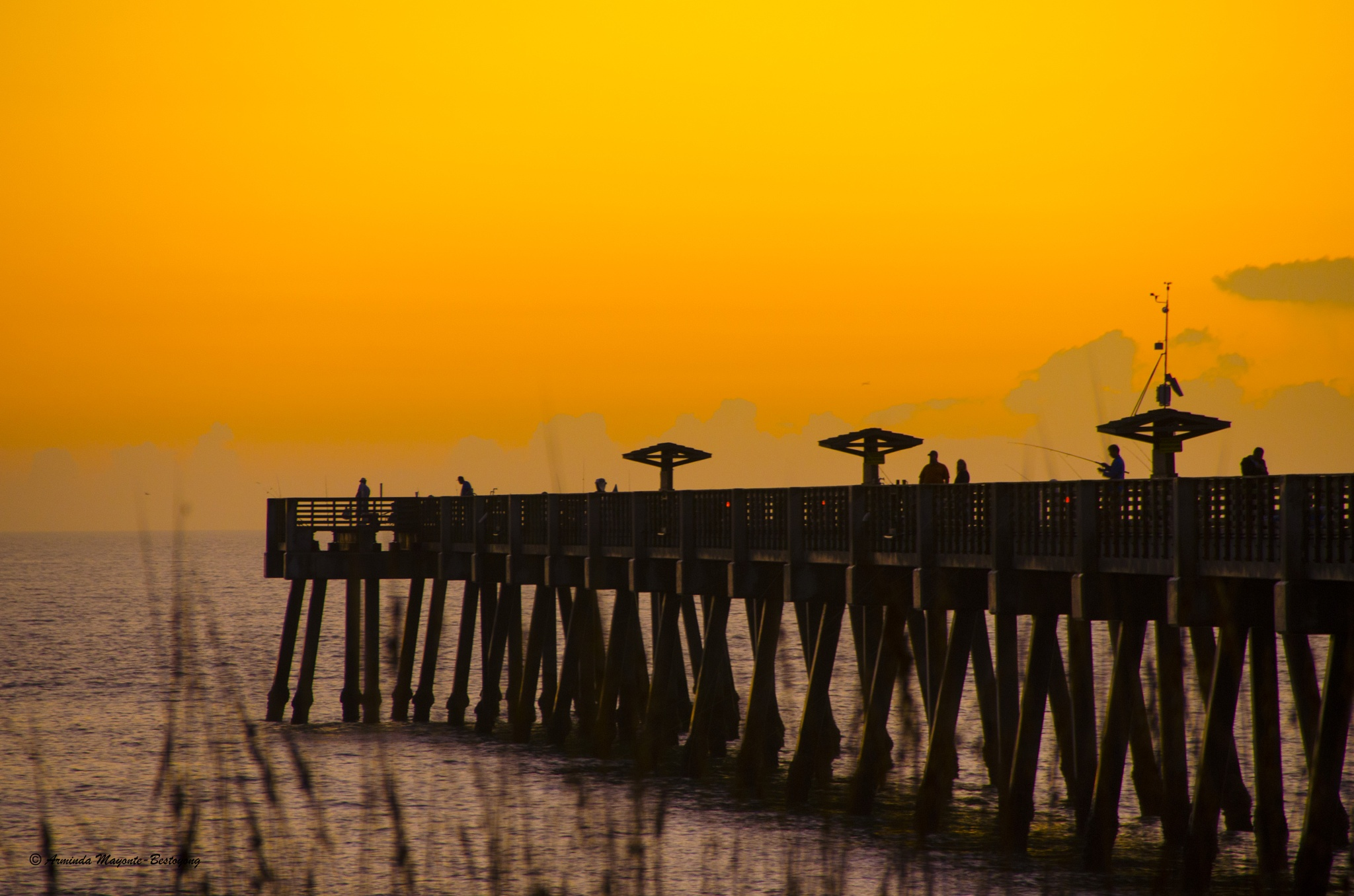 The Pier by Arminda