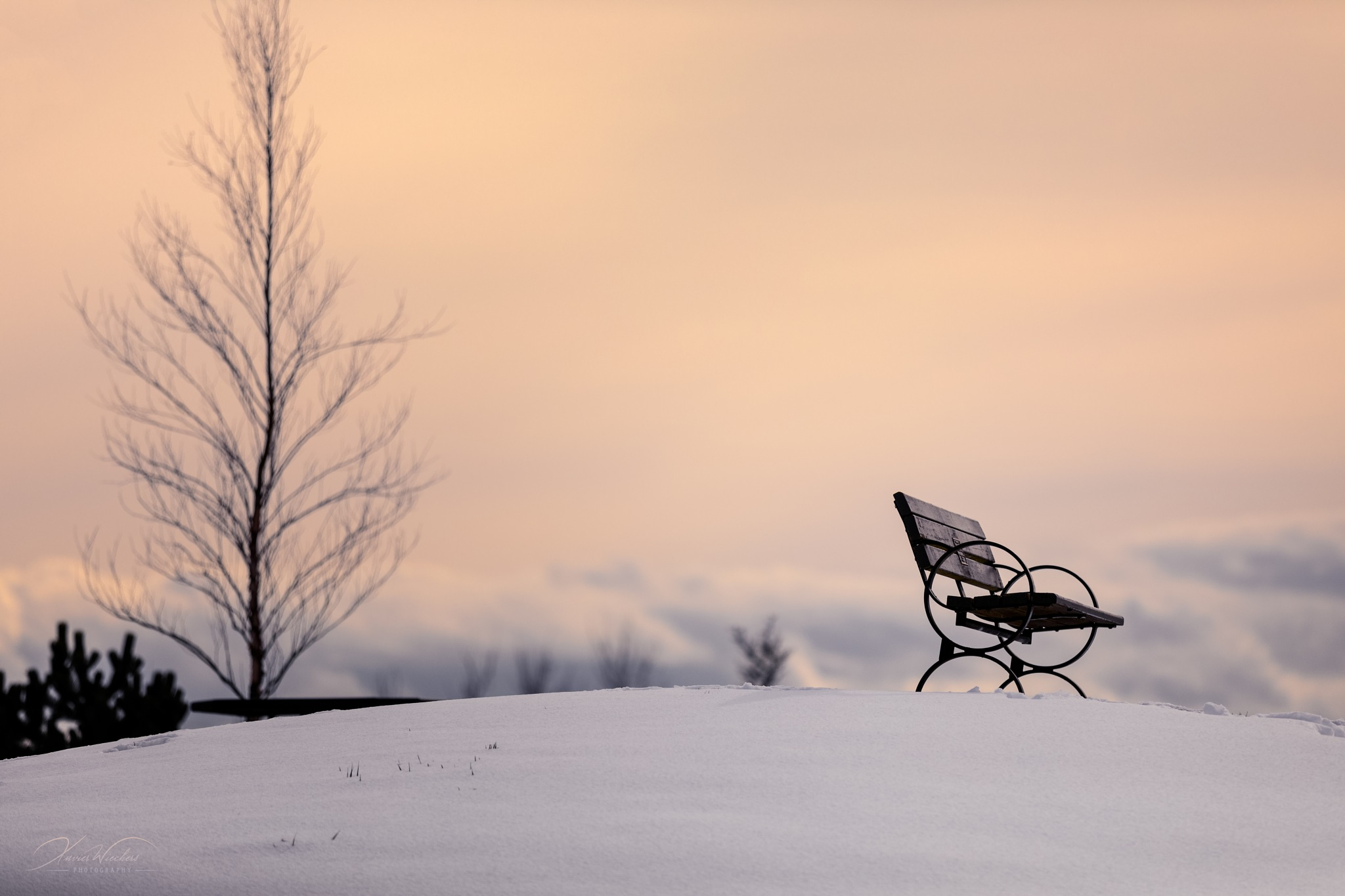 Park Bench on Snow Mound by xwiechers