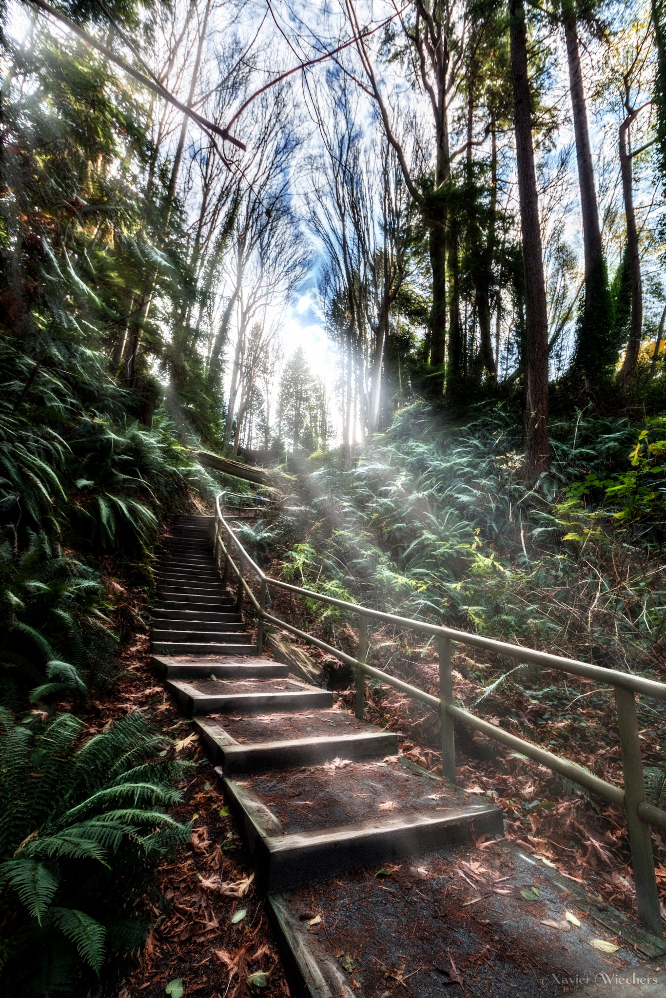 Steps at Tower Beach Trail 3 by xwiechers