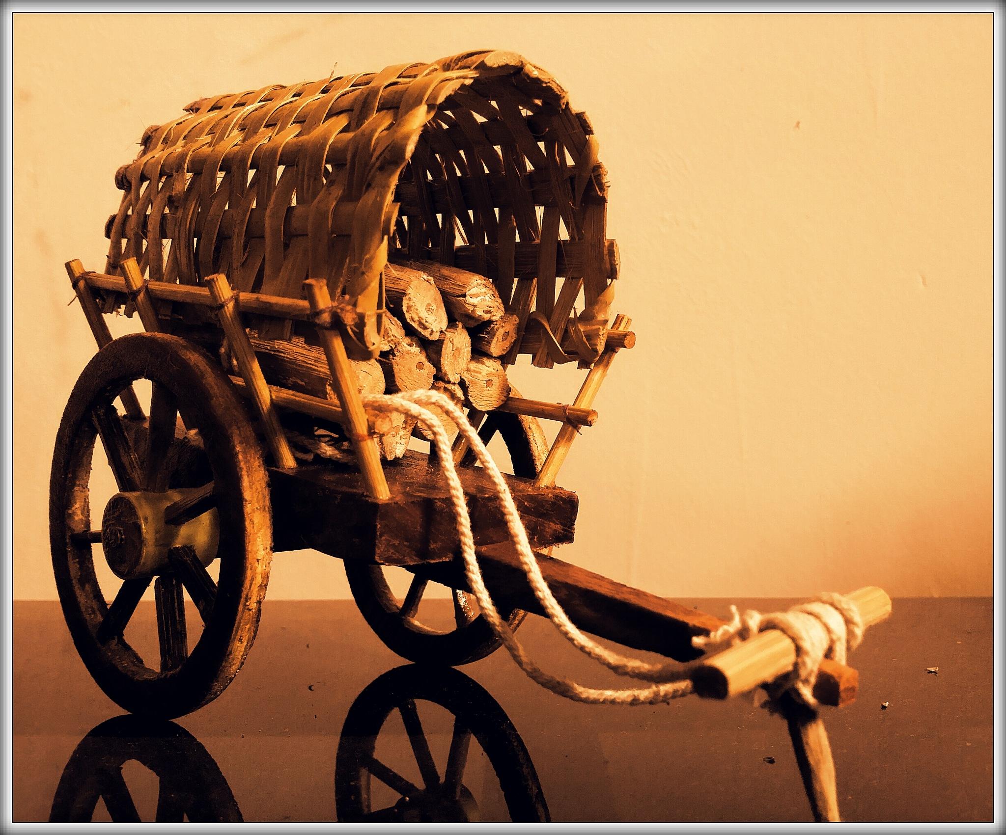 Bullock-cart    by Shakeel Sukri