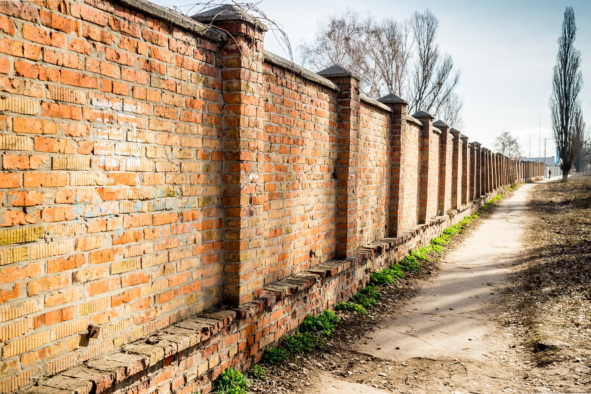 Photo in Street Photography #wall #vintage #spring #streetphoto