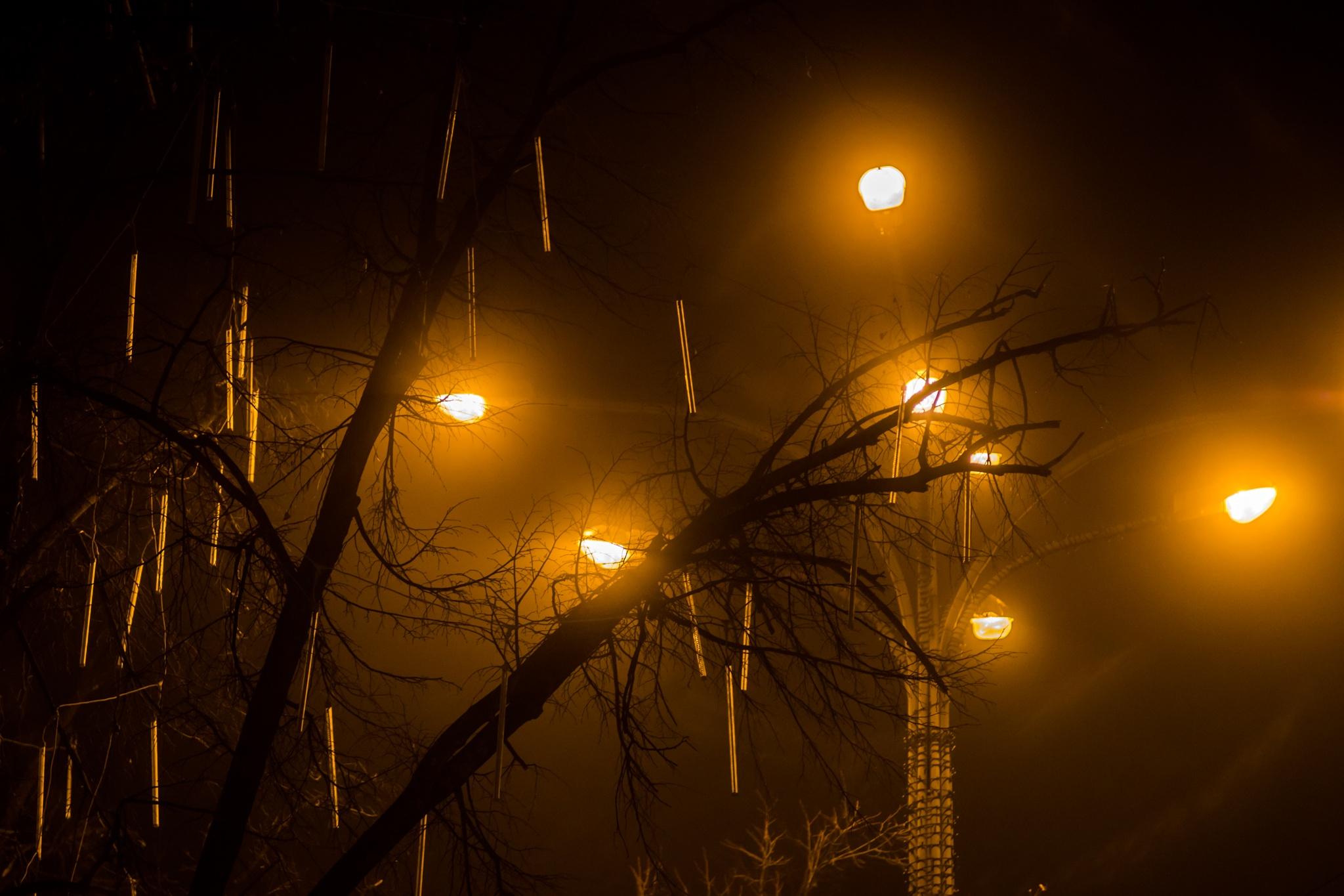 Moody... by Valerii Iavtushenko