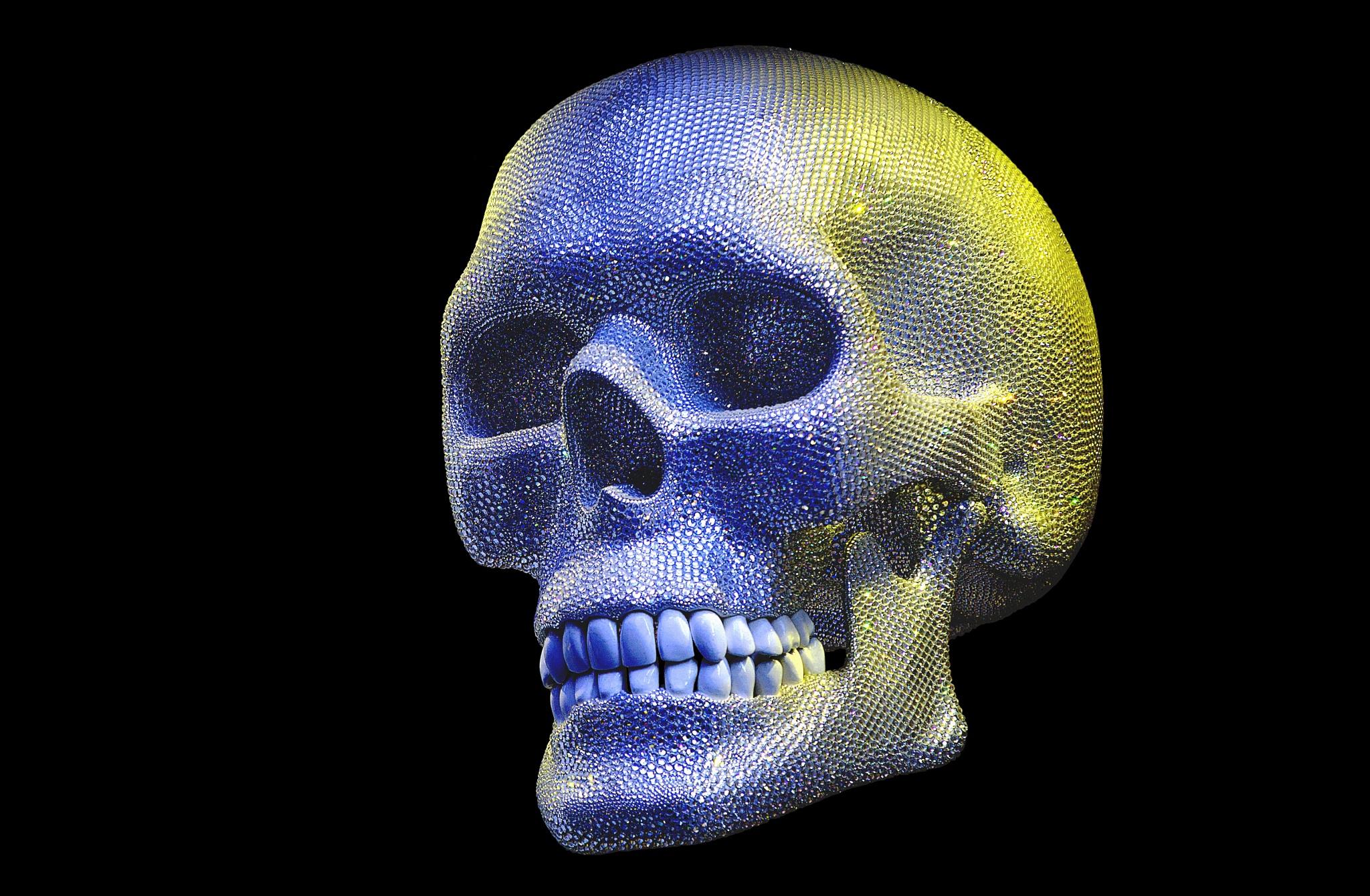 skull by Christoph Reiter