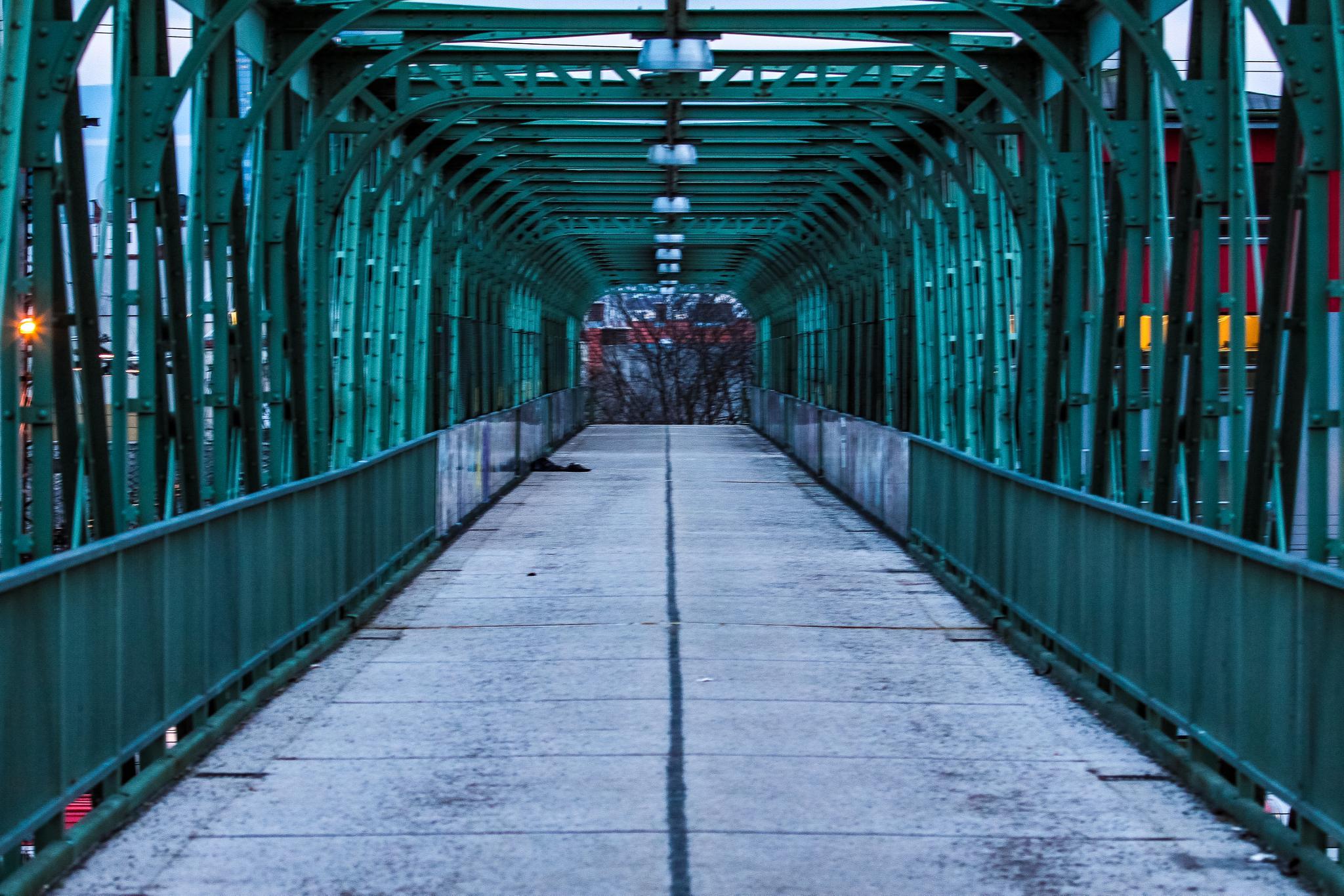 Bridge by Christoph Reiter