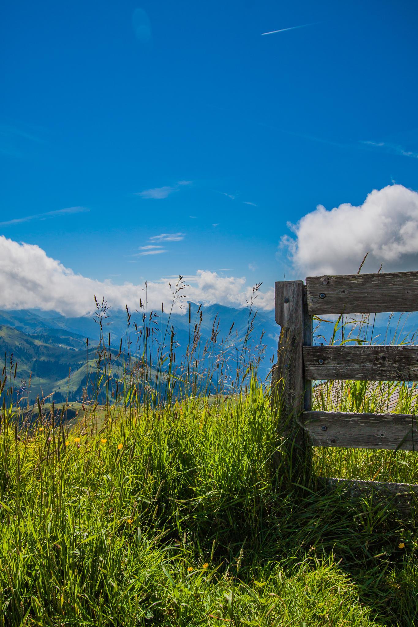 Tirol by Christoph Reiter