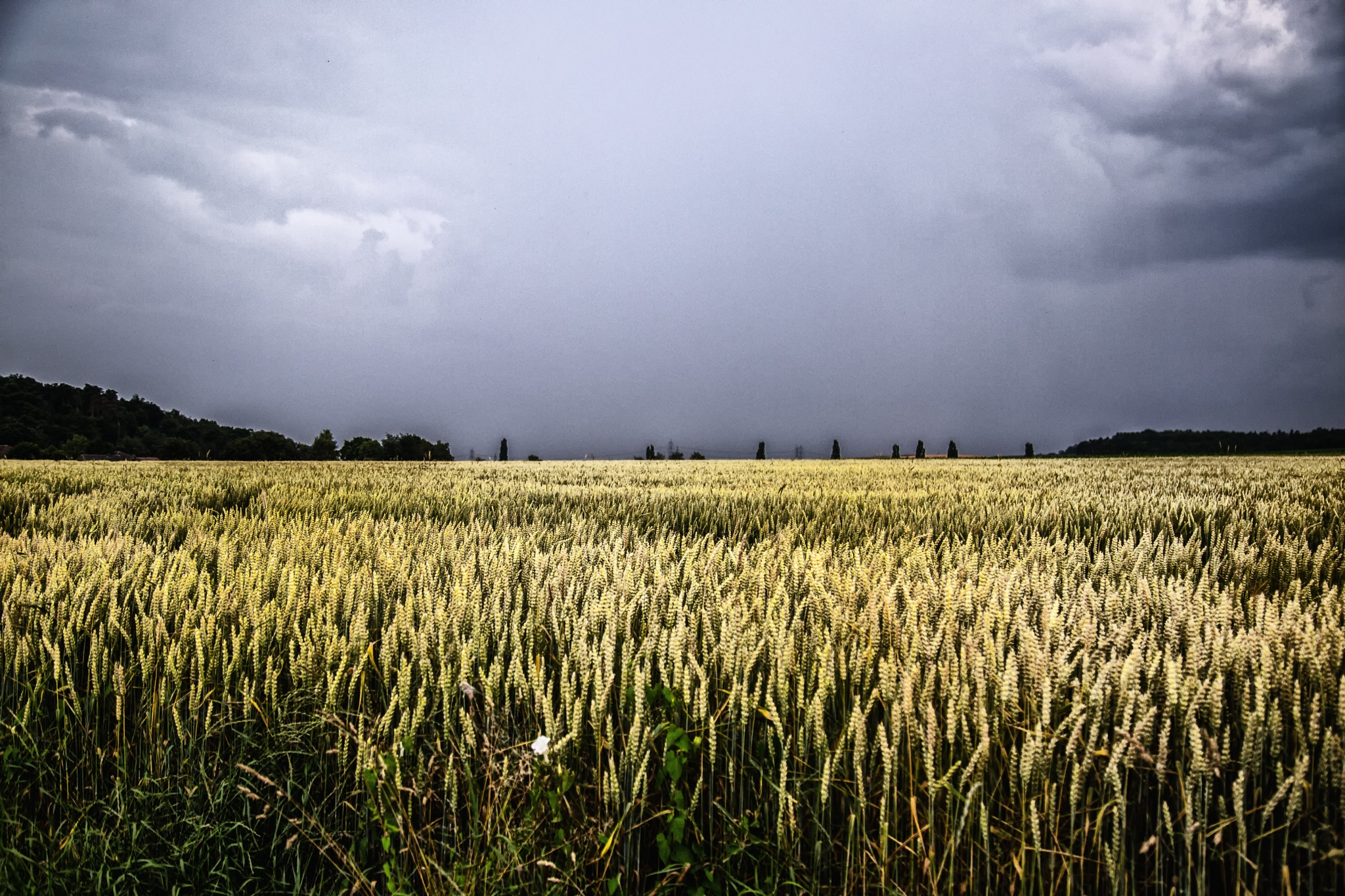 weather by Christoph Reiter