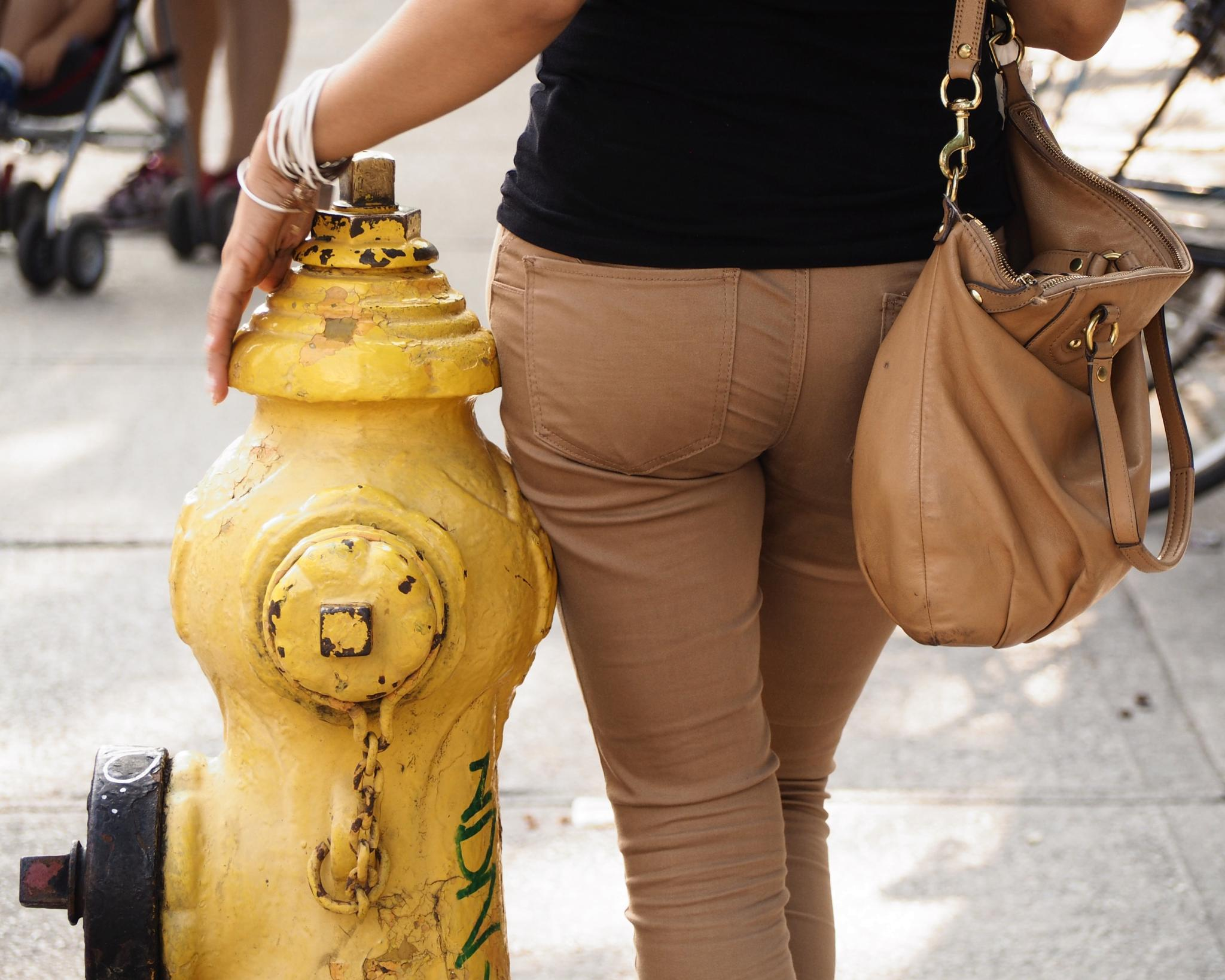 Fire Hydrants of Toronto by Po Wong