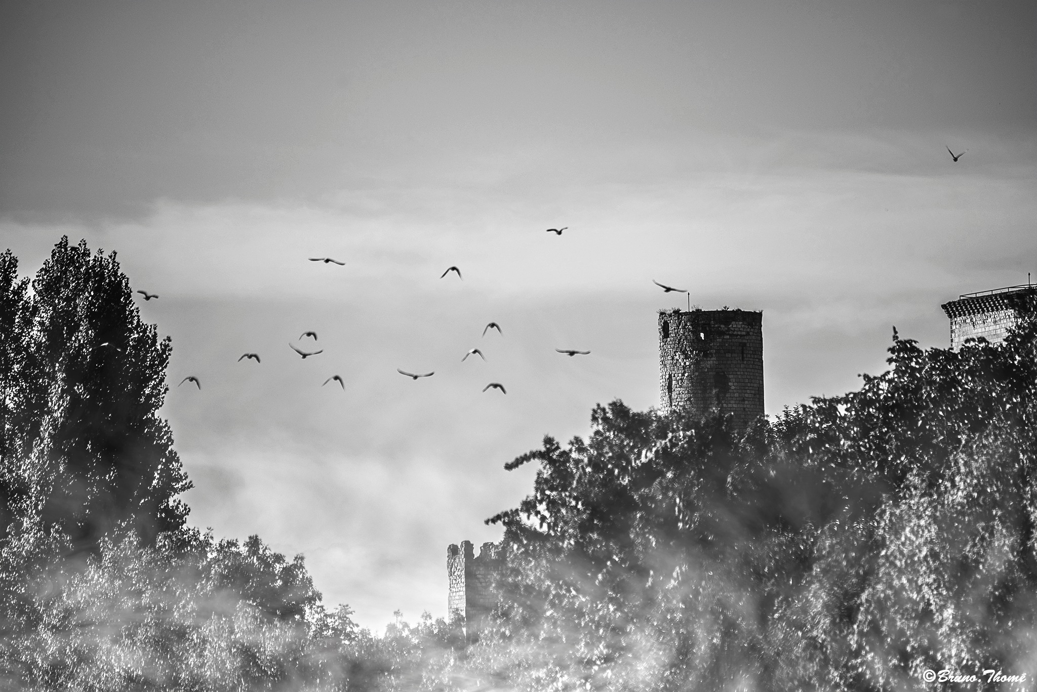 Tower in the mist by Bruno Thomé