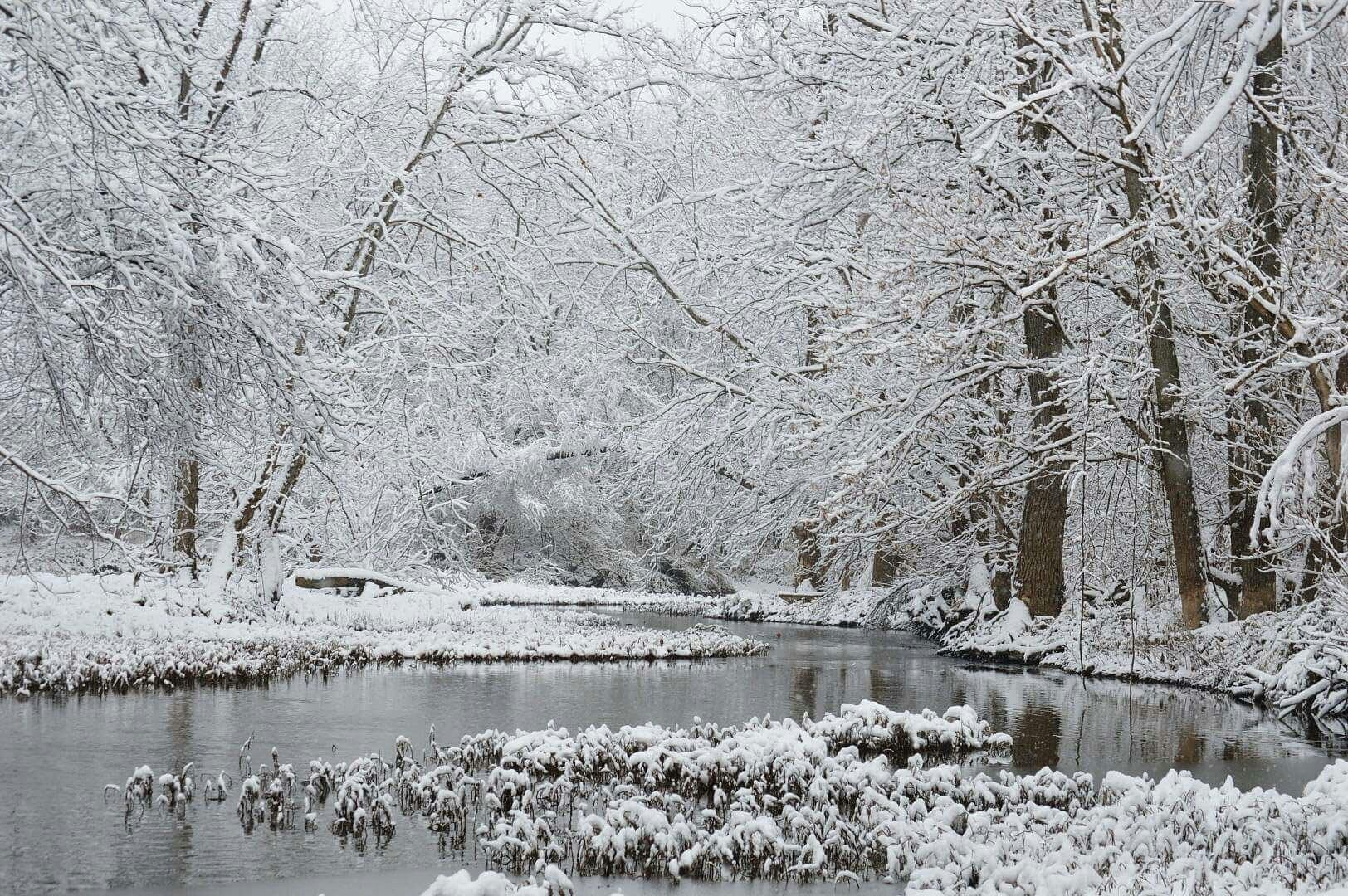 Winter Scene by Tom Kitchen