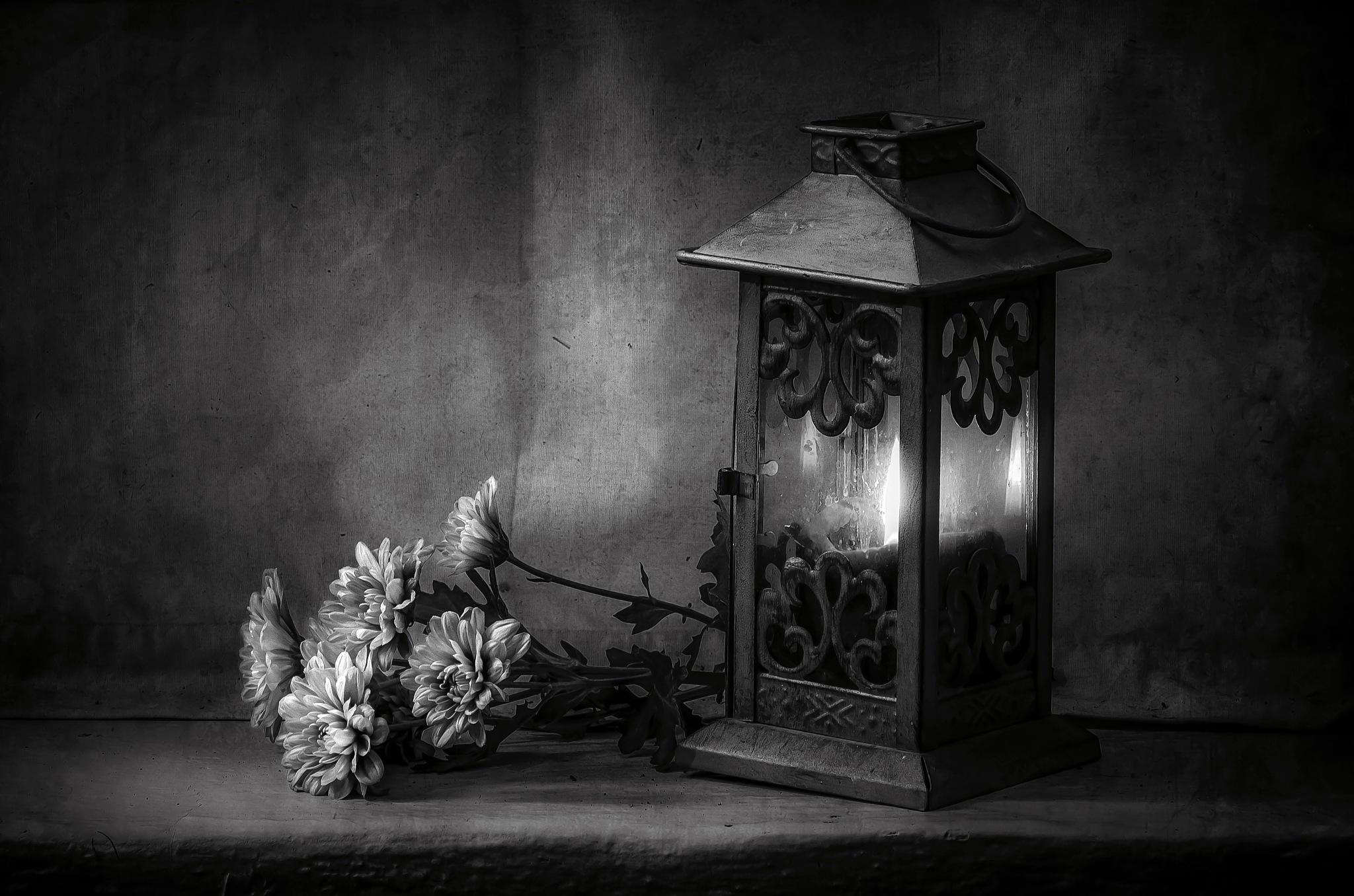 Light in B&W... by JACRIS