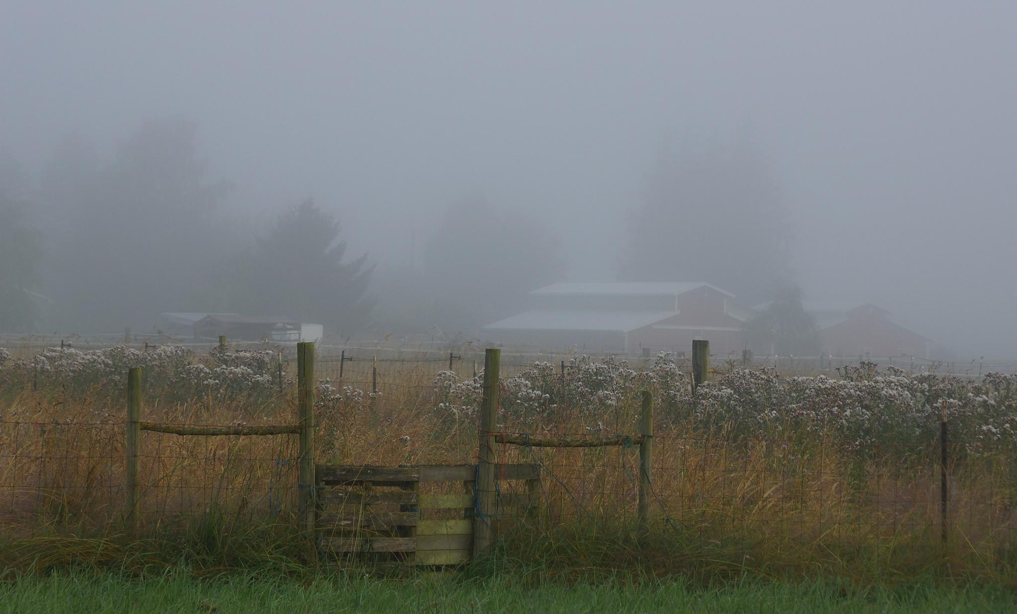 gate and barn in fog by allenhagler59663852