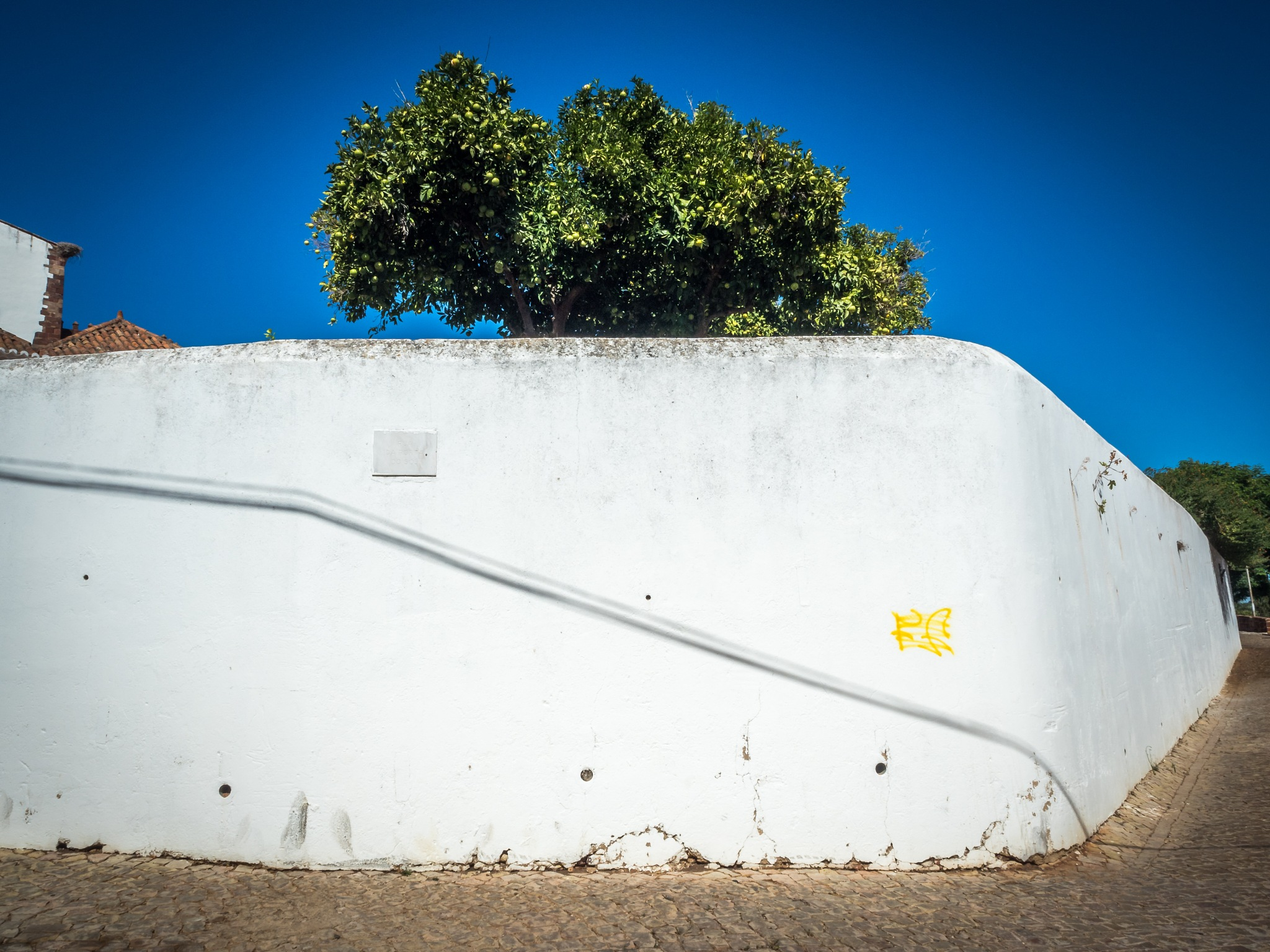 white wall by Oliver Penack