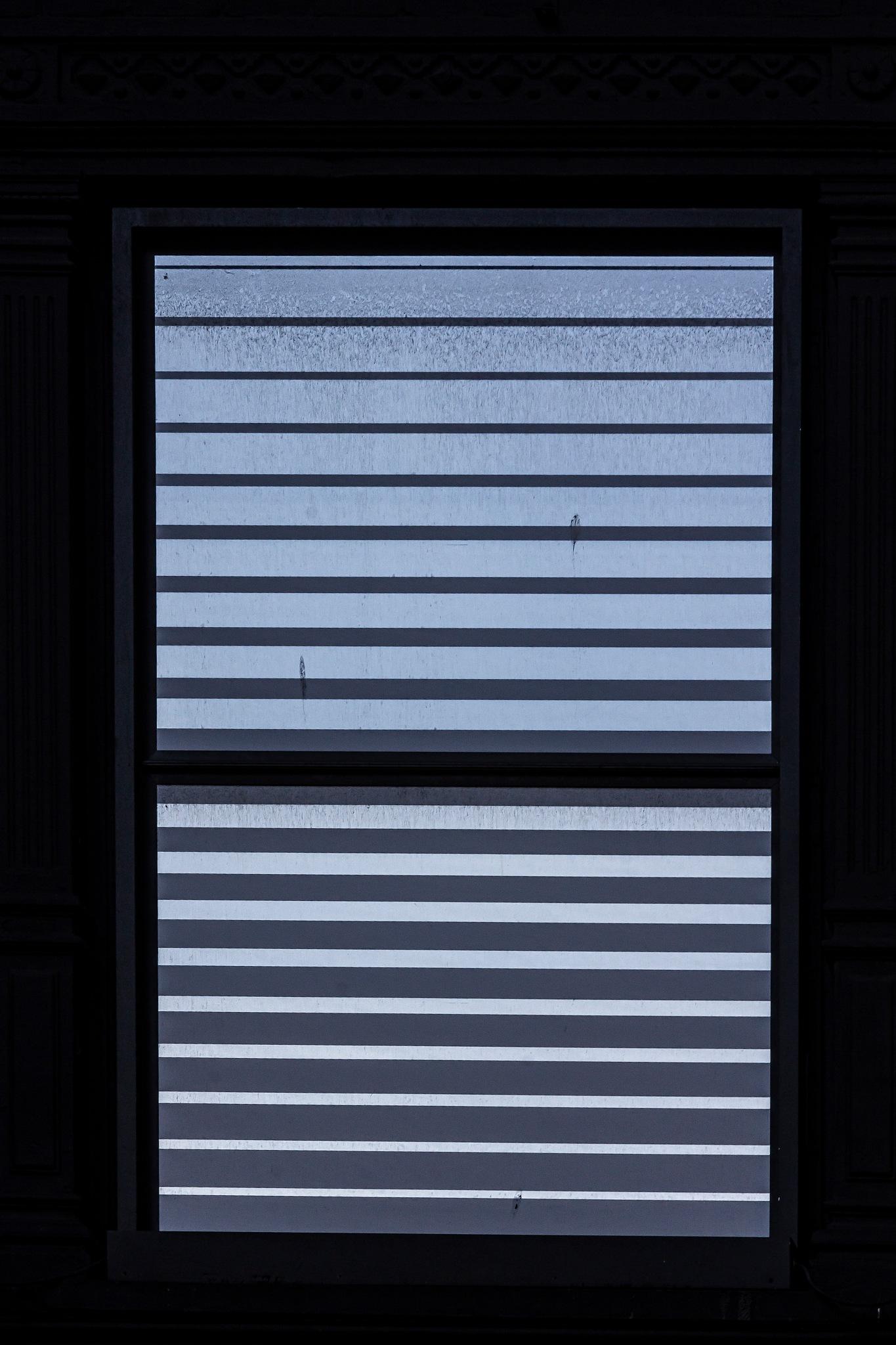 Metal Window Blinds by robertullmann