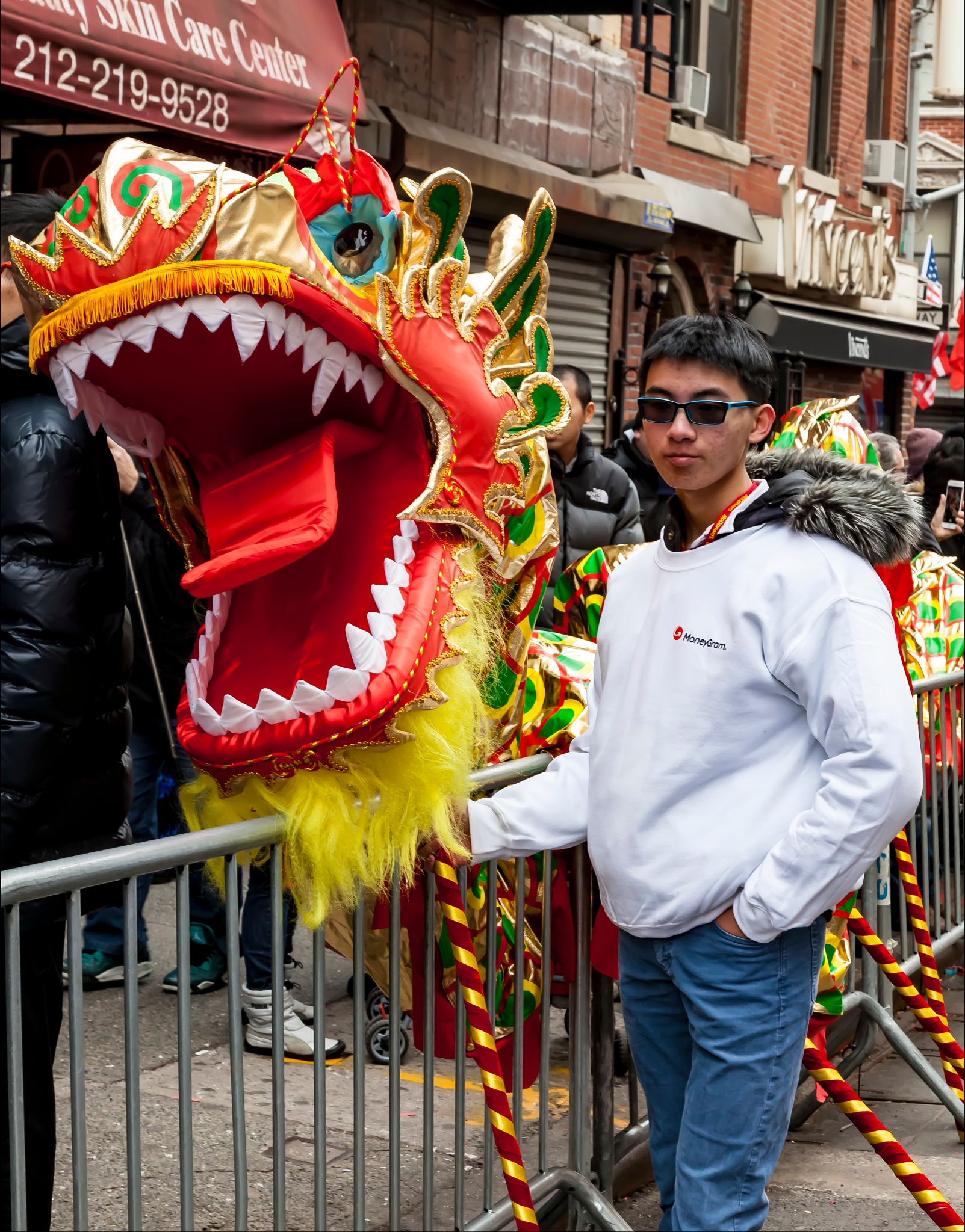 Lunar New Year NYC 2017 Lion Dance Costume by robertullmann