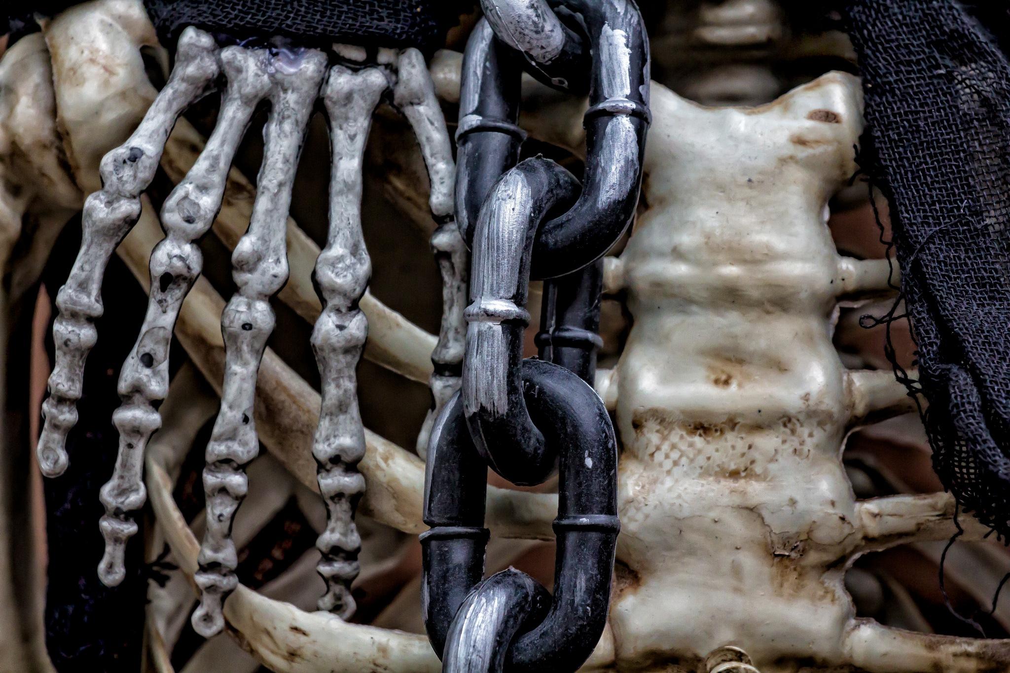 Halloween Skeleton amd Chain by robertullmann