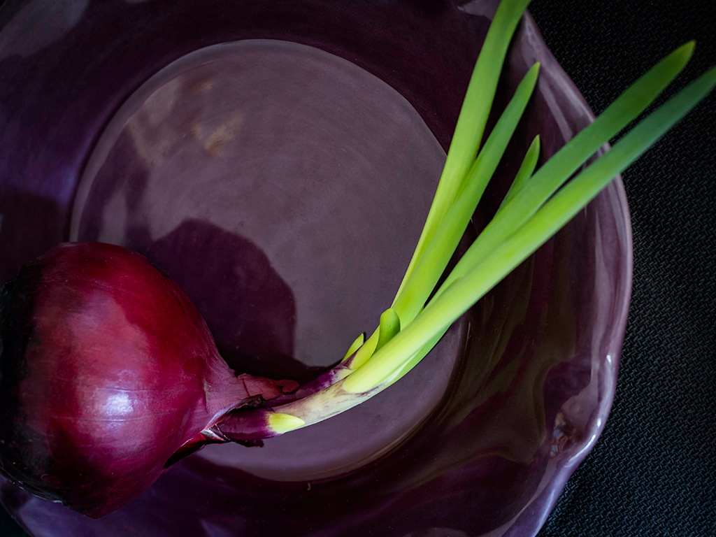 red onion by mcajan