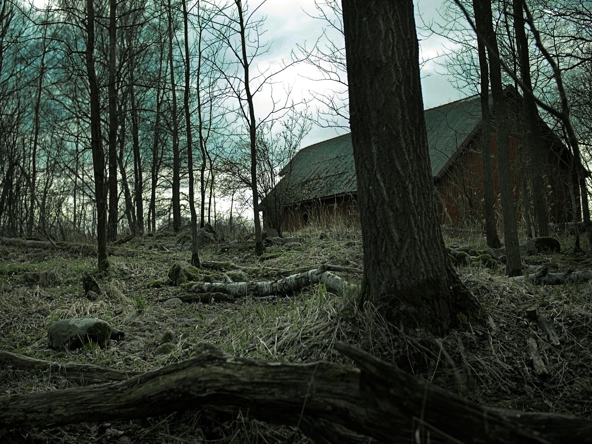 Dark barn by mcajan