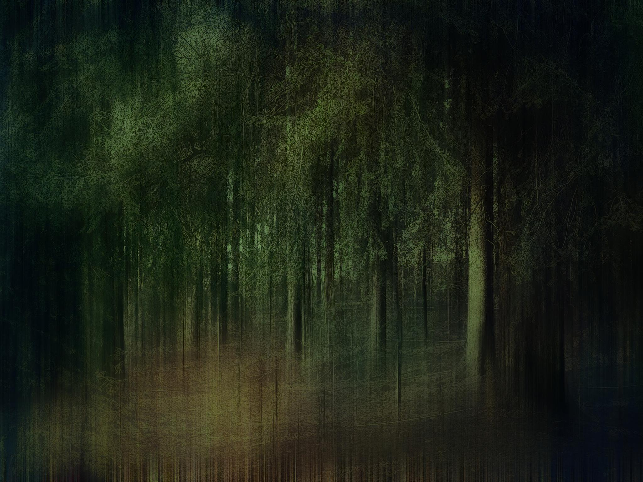 forest 13 by mcajan