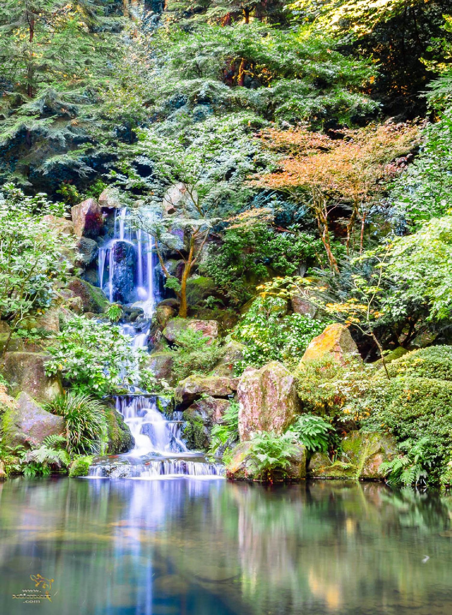 Waterfall by Mark Dunton