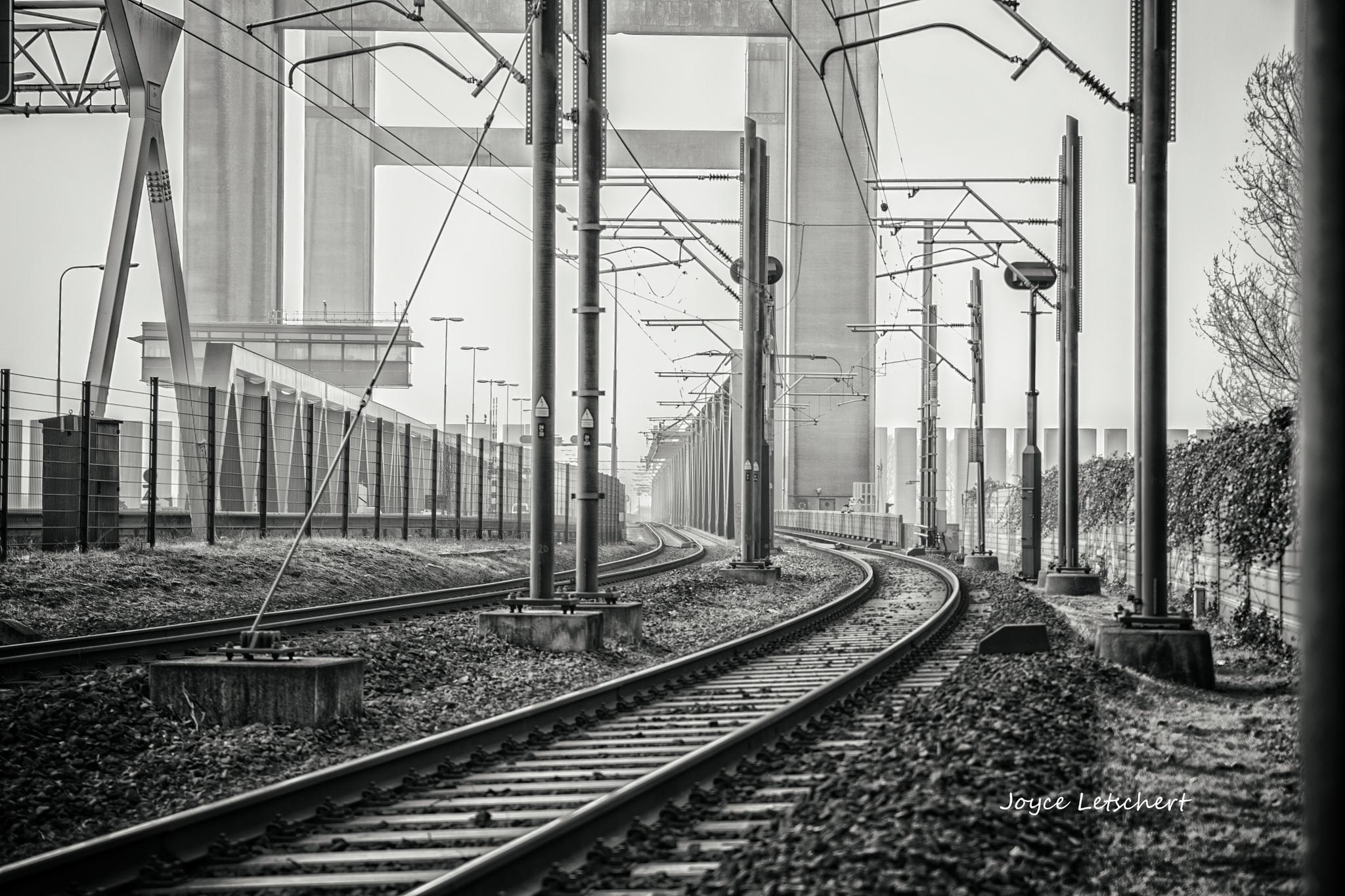 Straight lines railway by joyceletschert