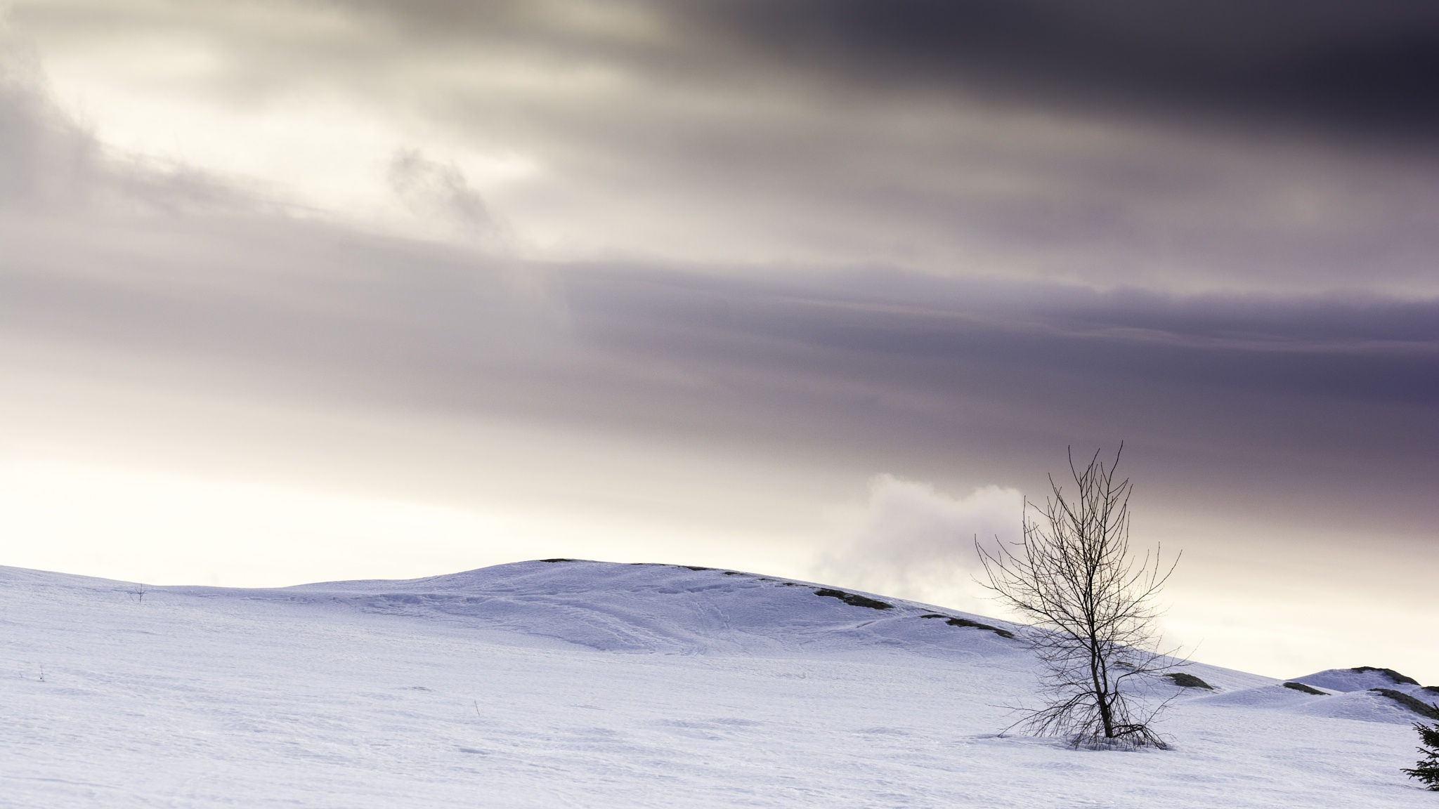 serenity... by Robert Mikk