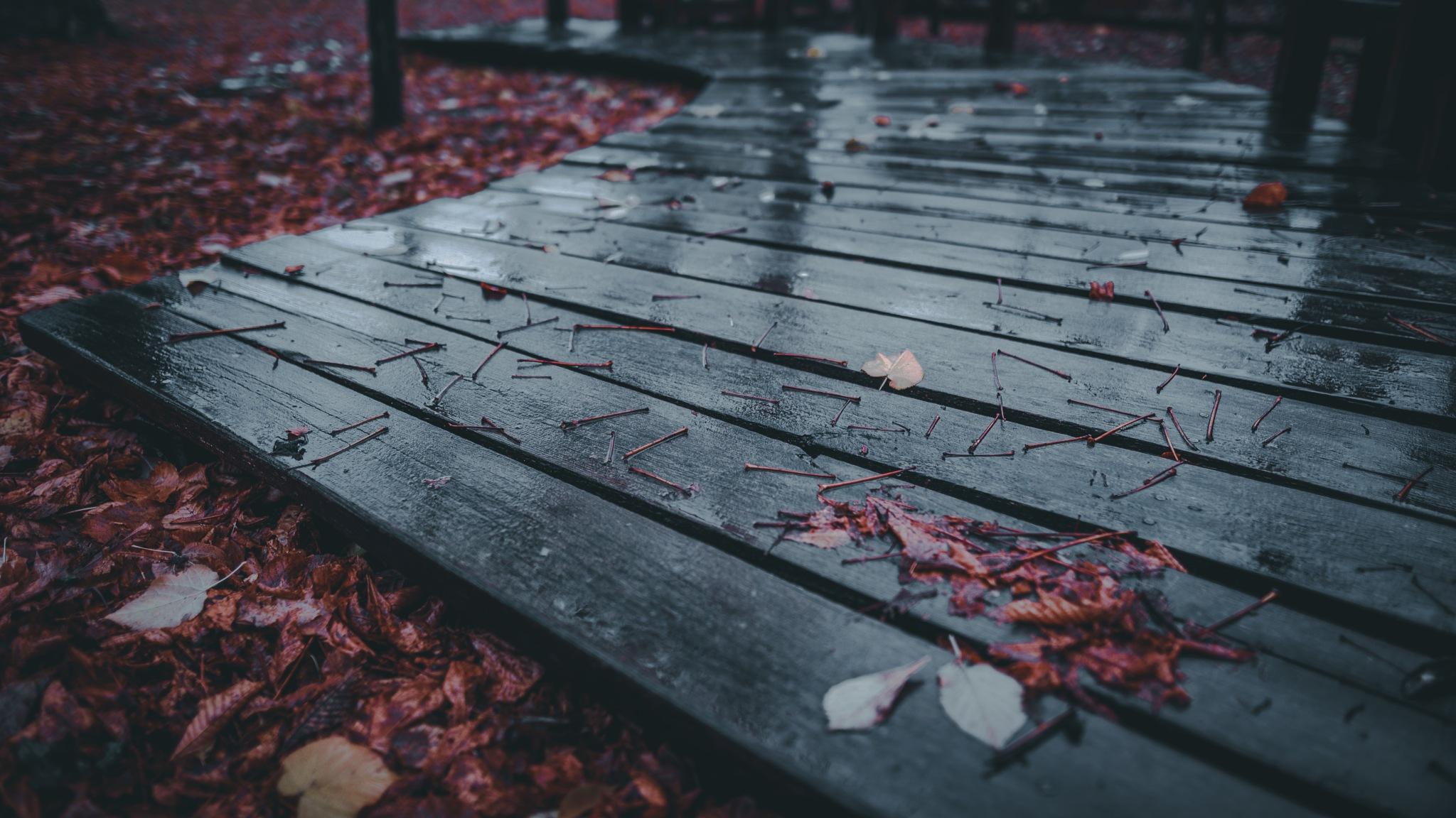 rainy day by Robert Mikk