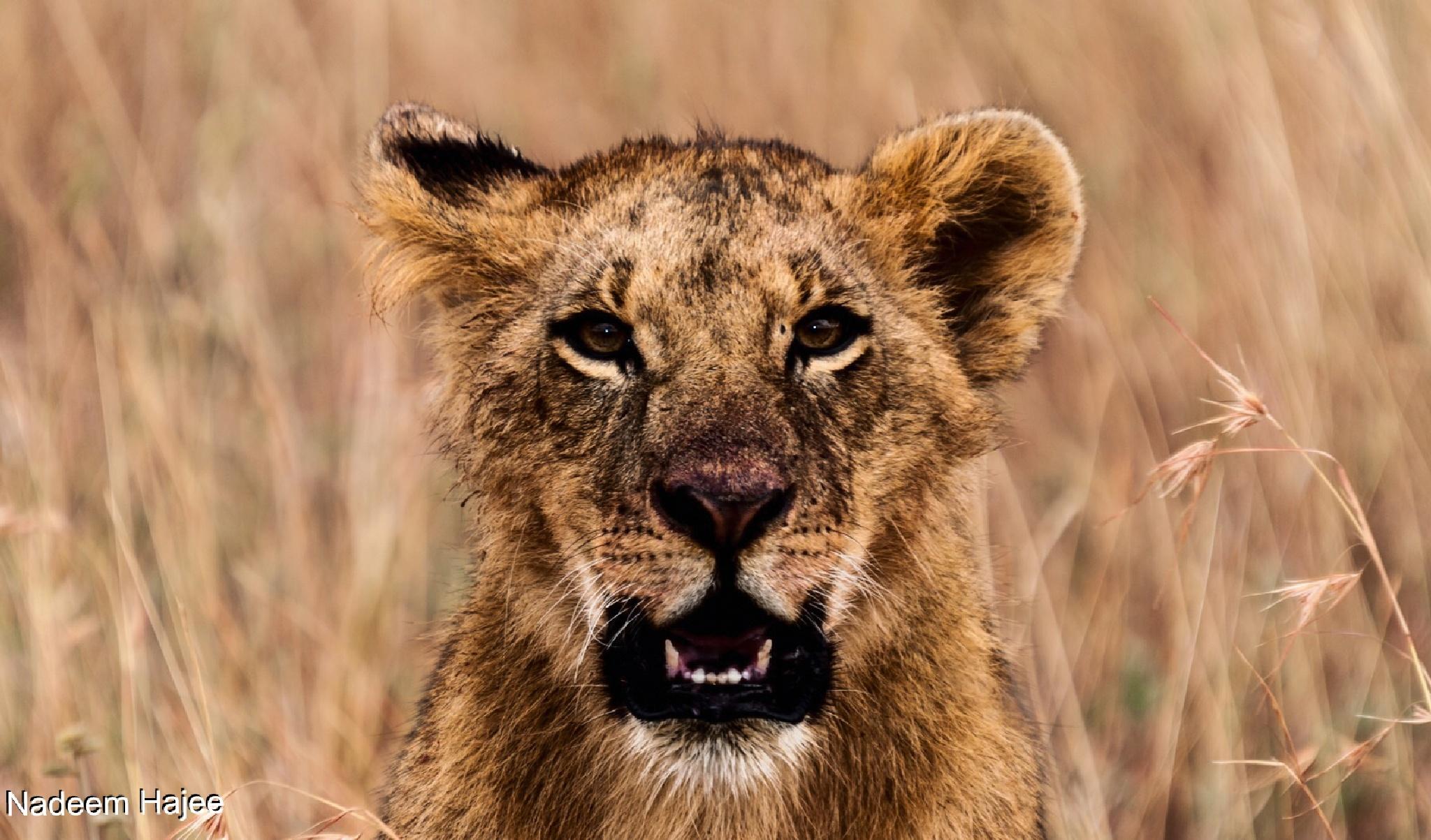 Angry Teen look by Nadeem Hajee