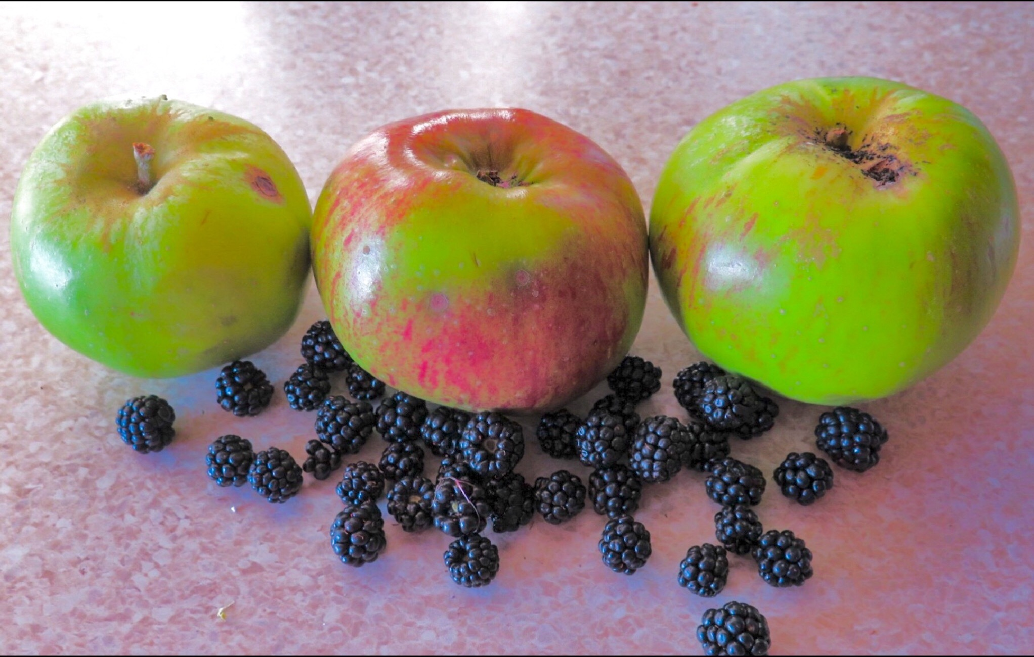 A scattering of autumn fruit  by Terry Reynolds