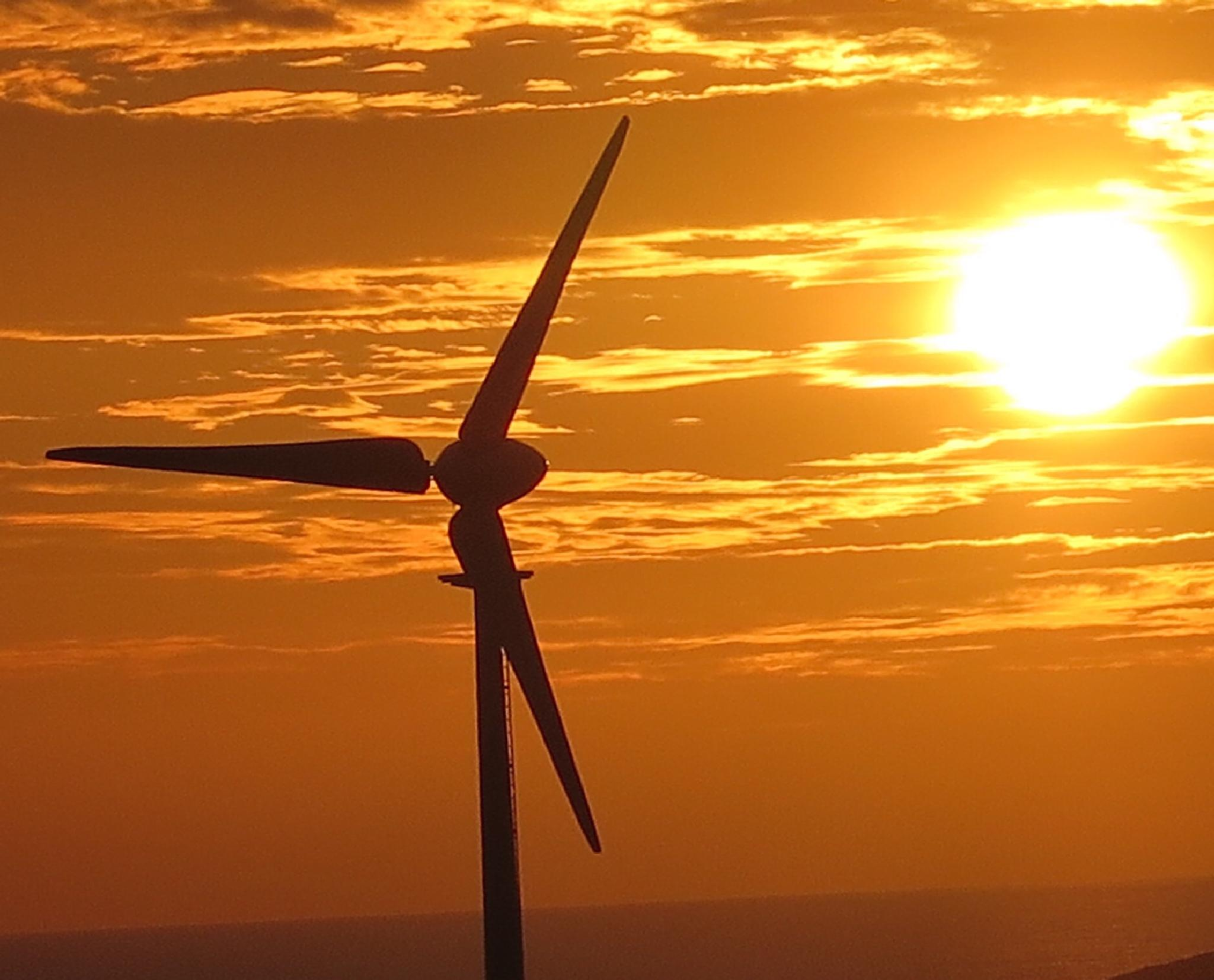 Wind power by Terry Reynolds