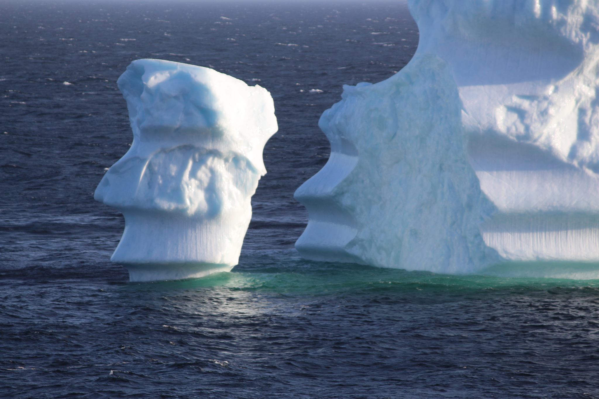 face of a iceberg by Terry Reynolds