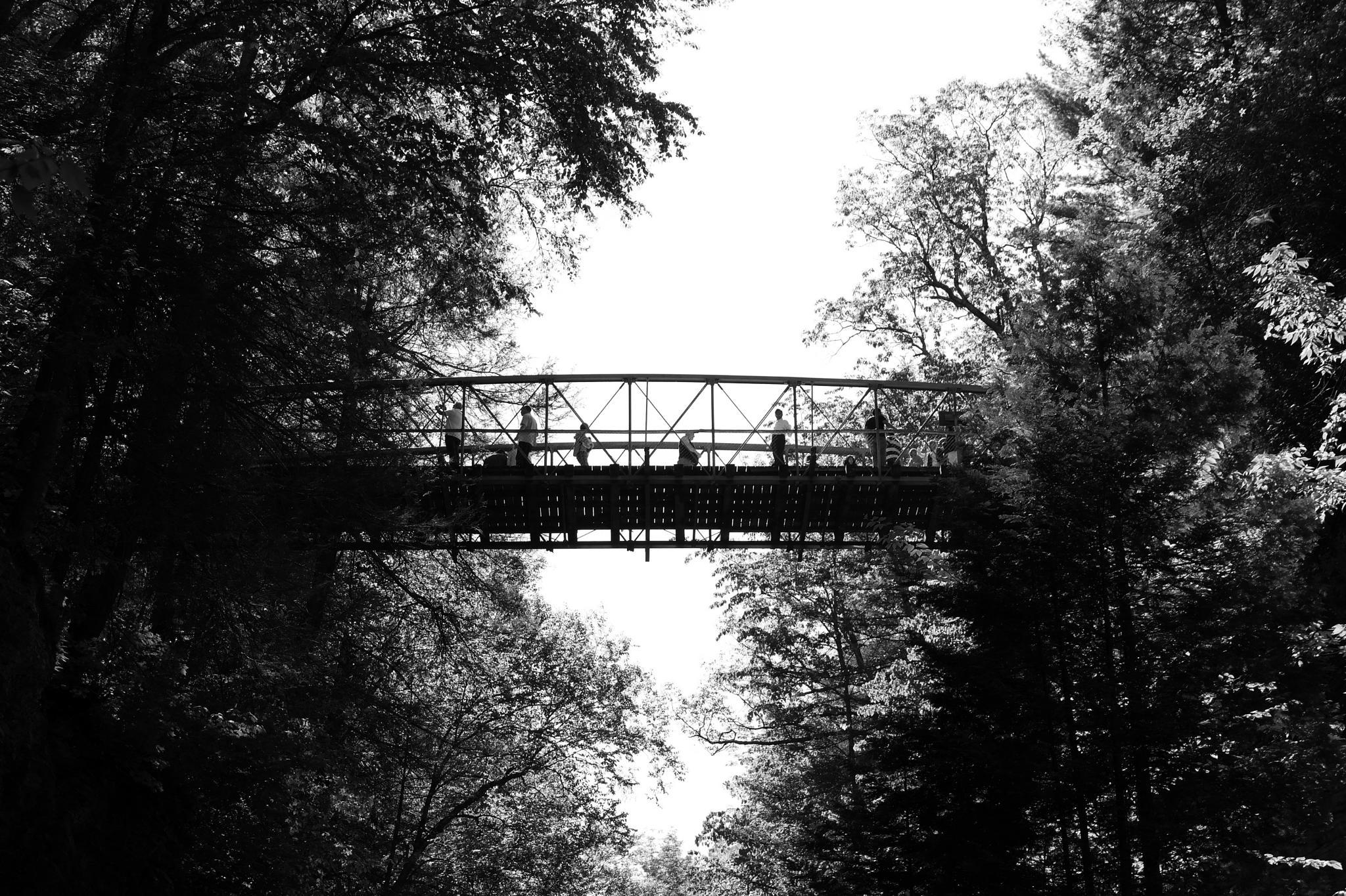 A Bridge Across The Gorge by visbimmer79