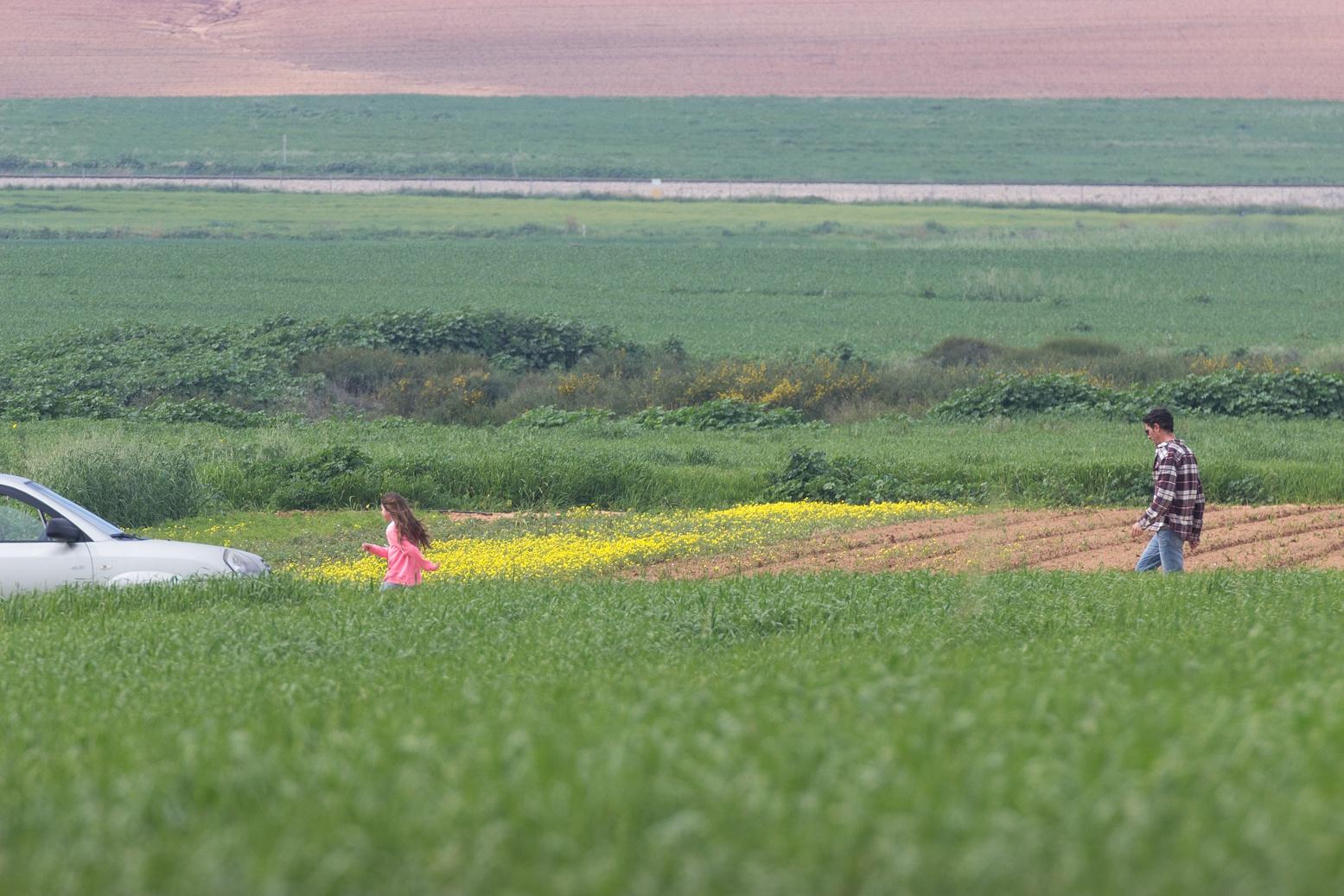 In field by Anatoly Vinokurov