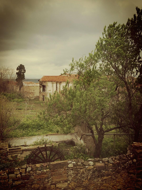 ...view through school window in Chios by Maria Vitzileou