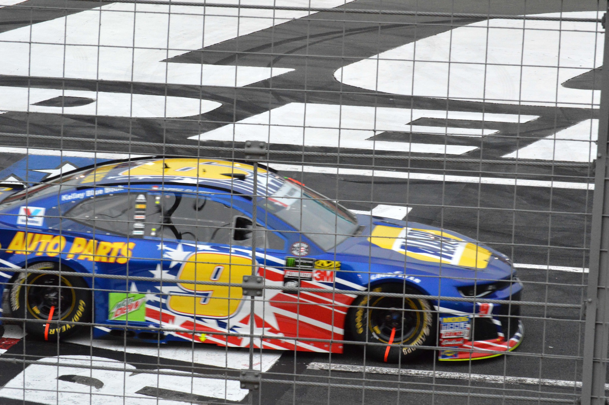 Chase Elliott by Dave Sesher