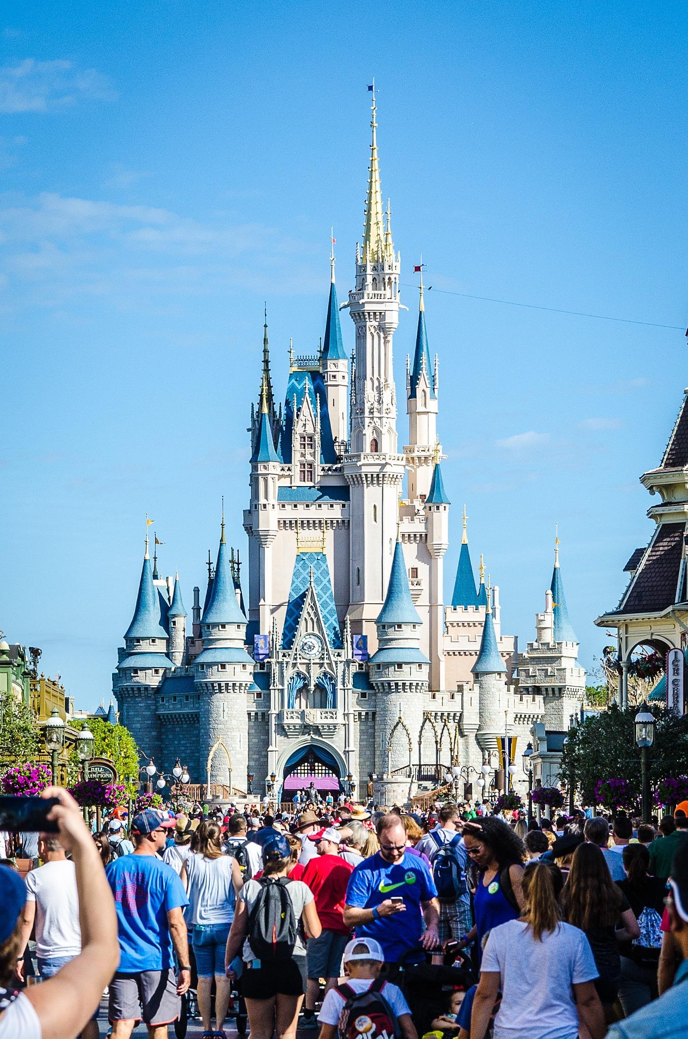 Cinderellas Castle by Derek Pogue