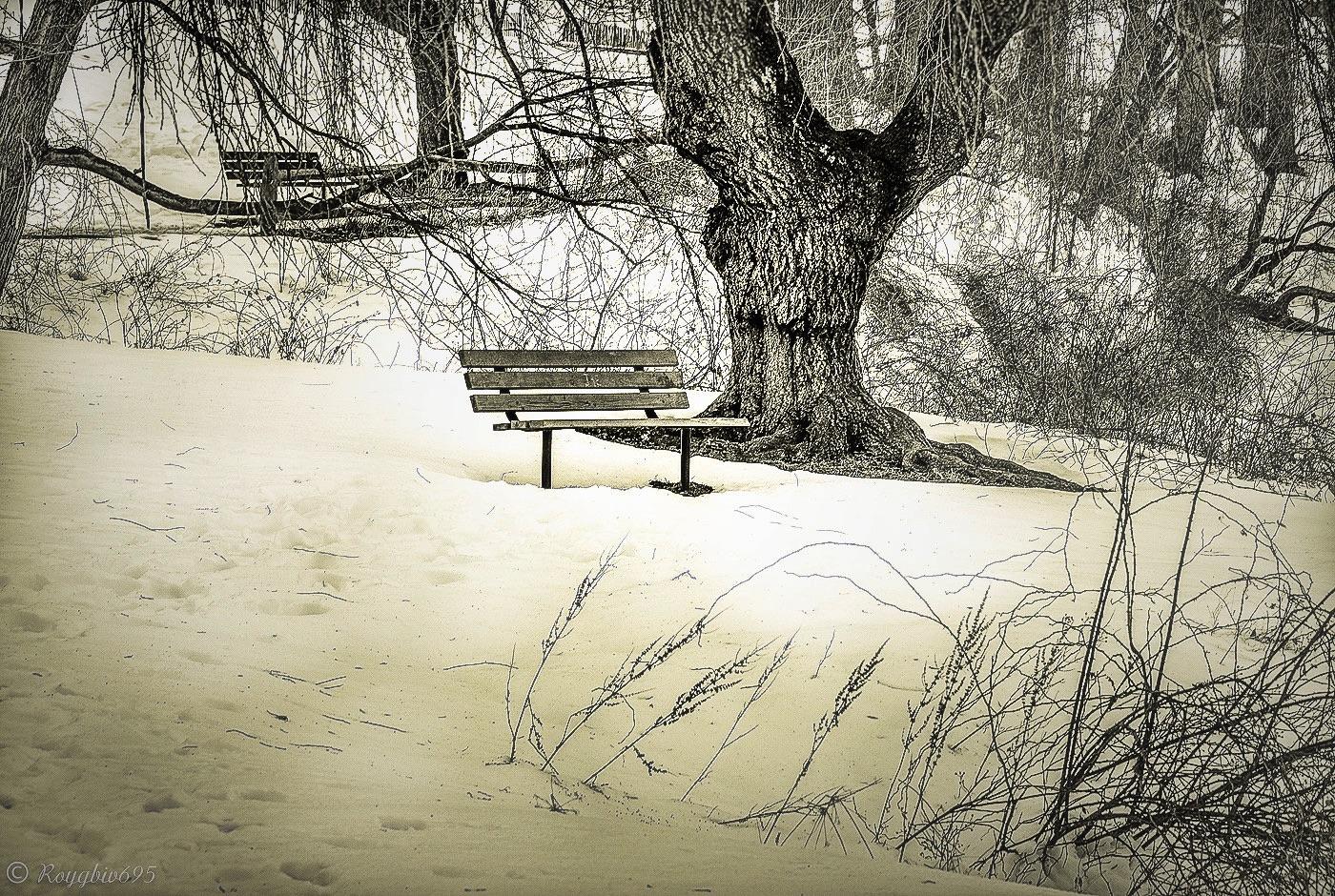 Photo in Random #nature #winter #landscape