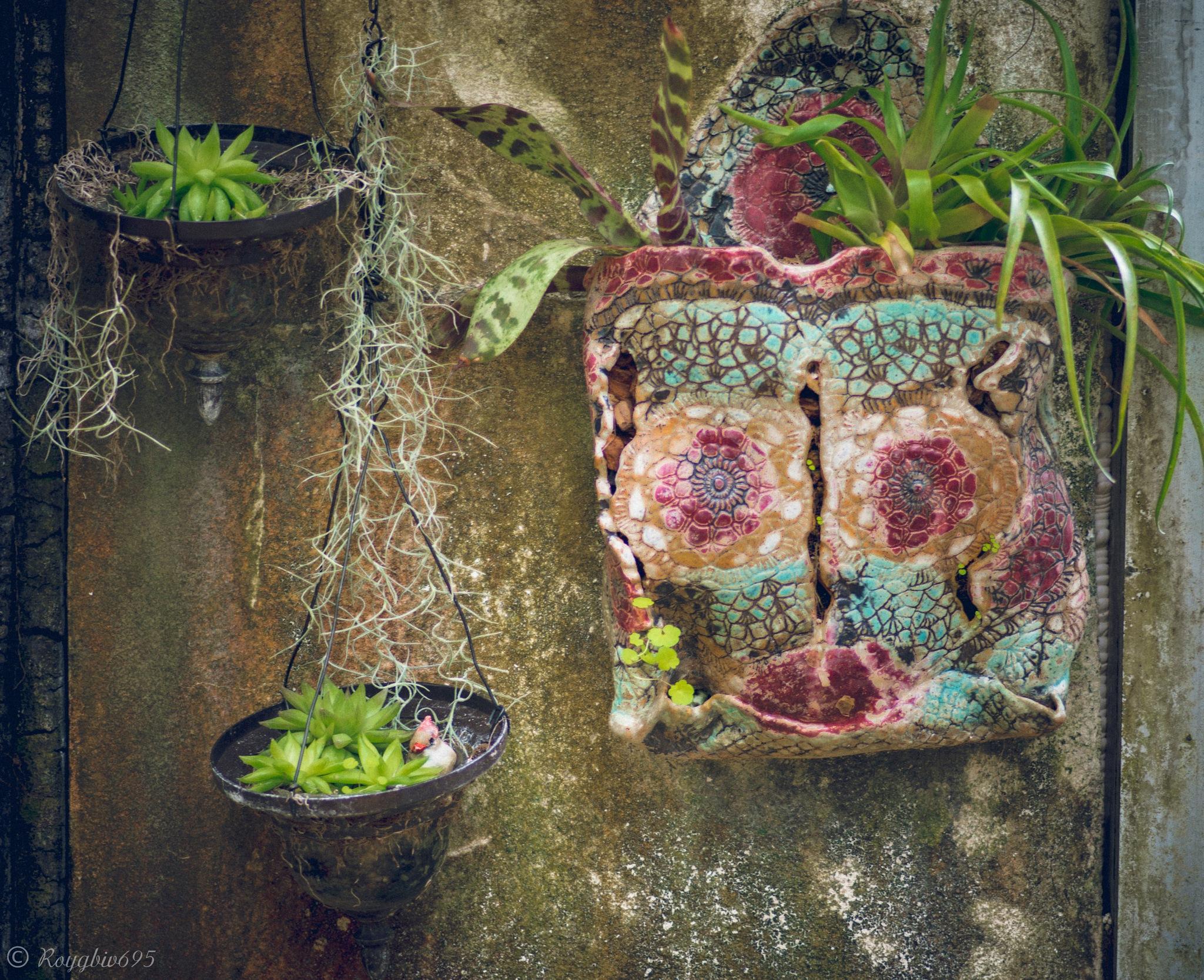 Garden wall by Roygbiv695