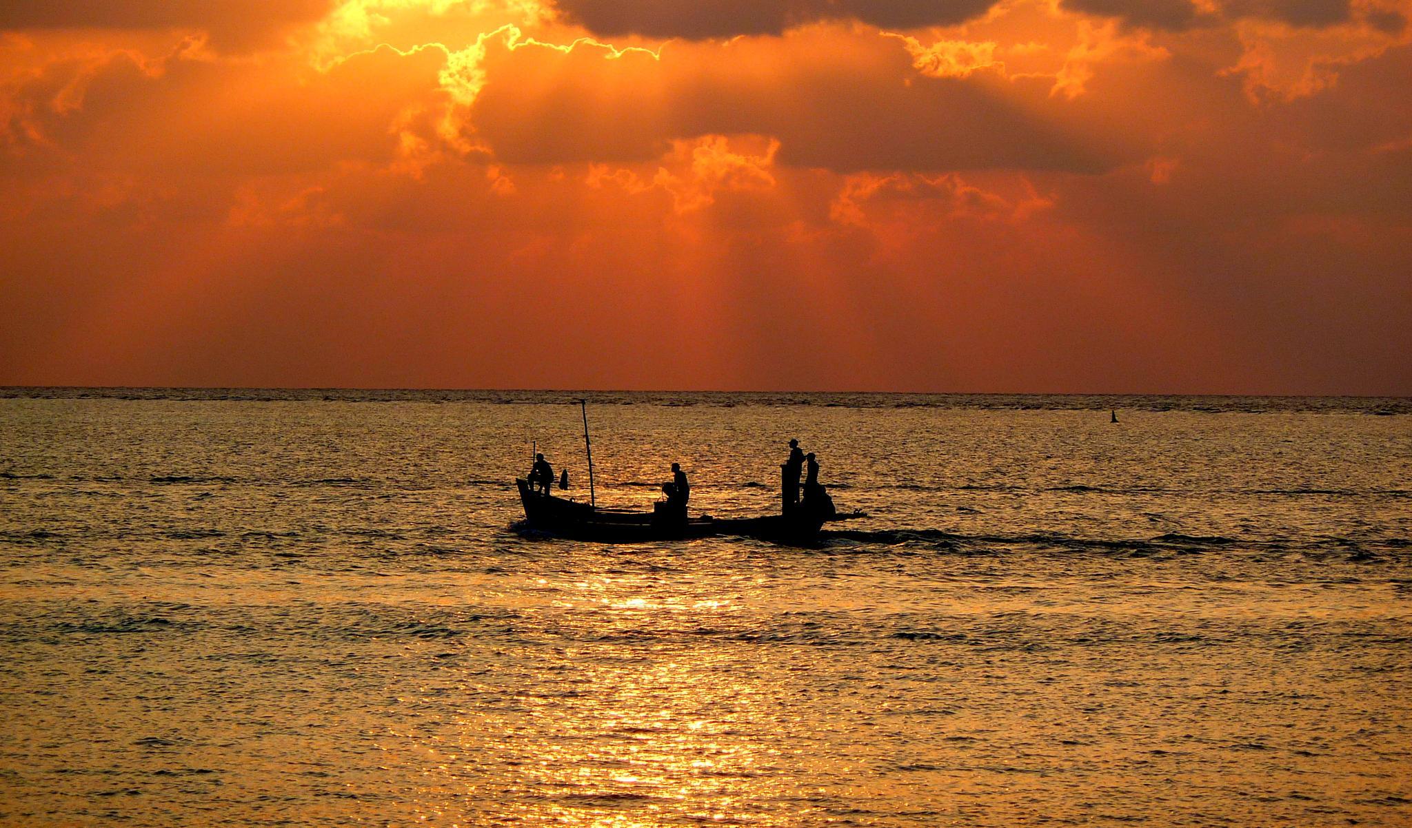 warm sunset  by samirsarkar