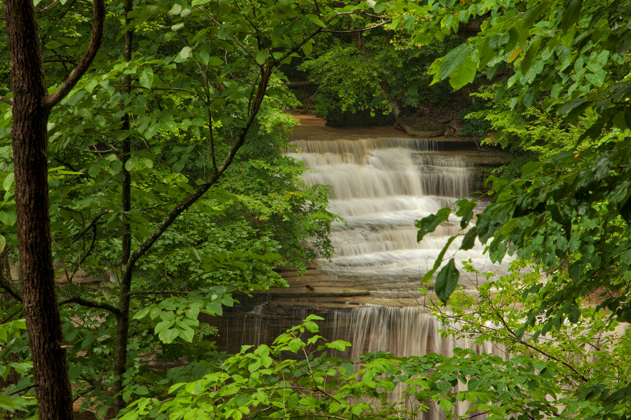 Lower Clifty Falls by Kevin Kludy