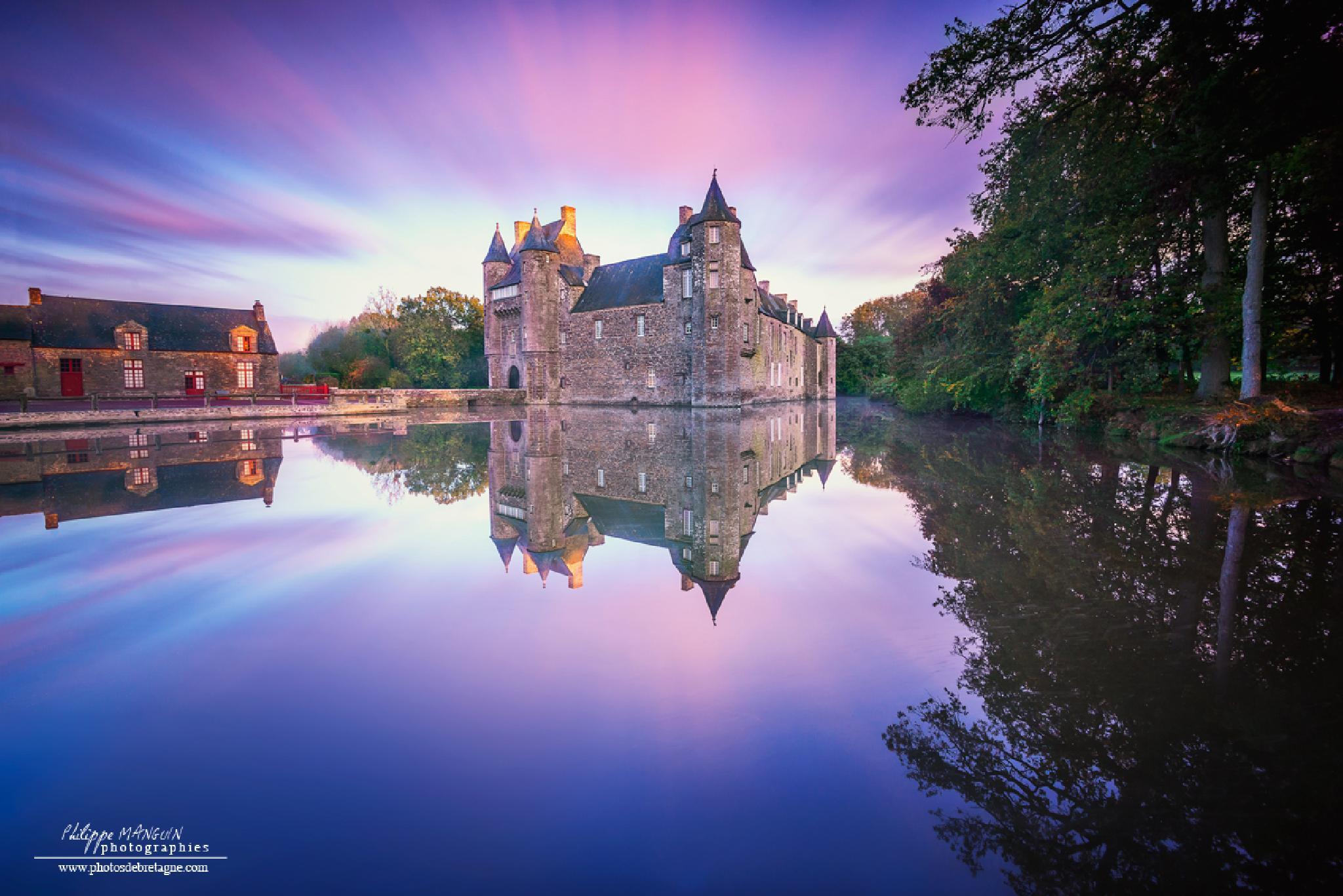 Trecesson castle by PhilippeMANGUIN
