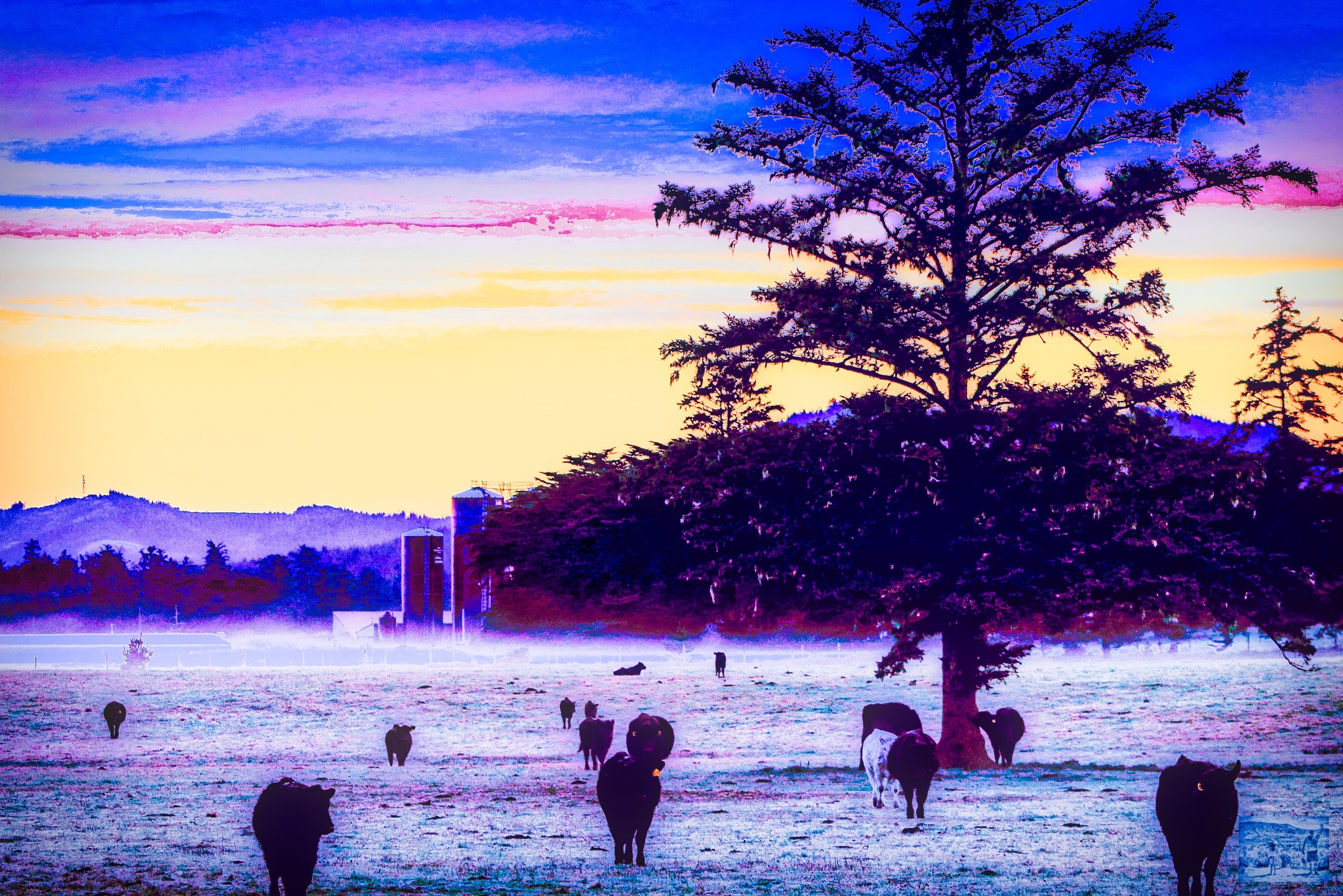 Winter on the Ranch by Christopher S Johnson