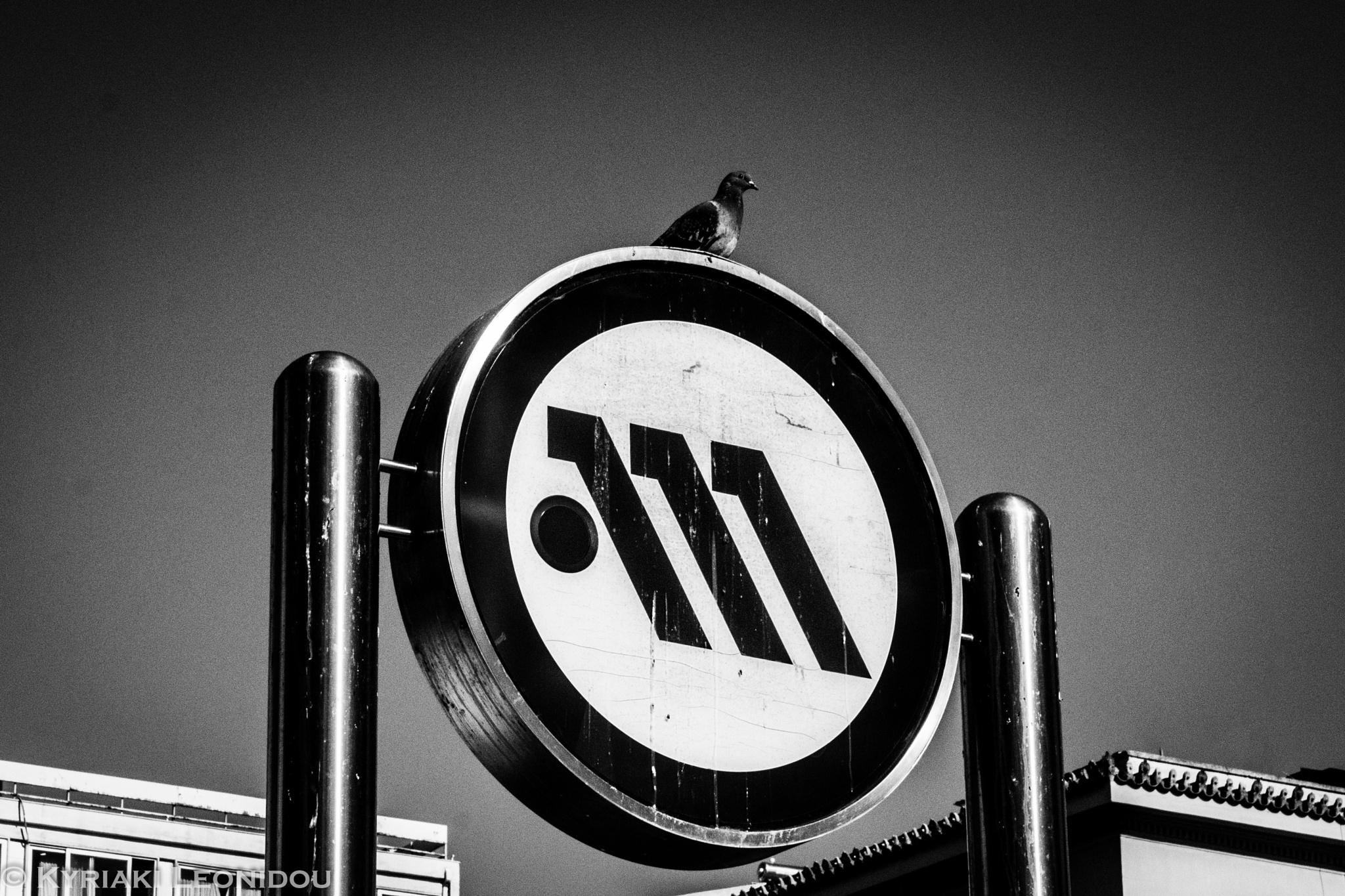 Ready for a ride? by Kyriaki Leonidou