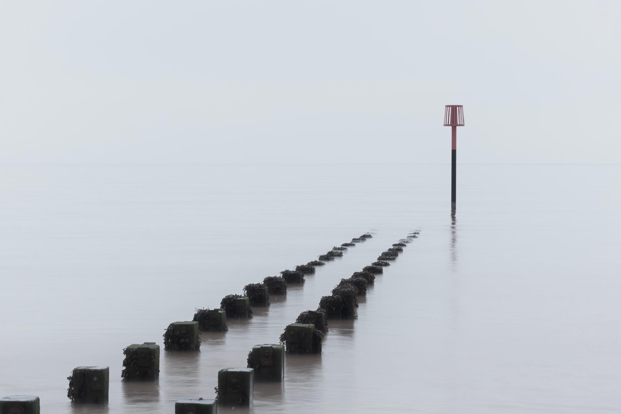 Into the Fog  by Carl Mickleburgh
